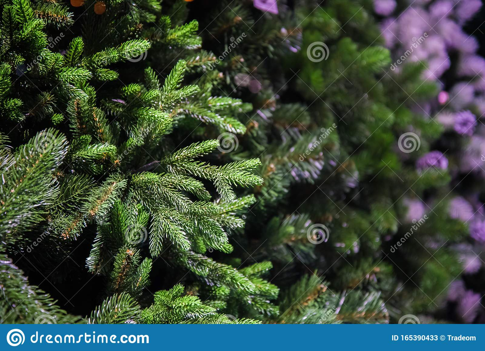 Decorative Artificial Christmas Trees In The Store. Sale ...