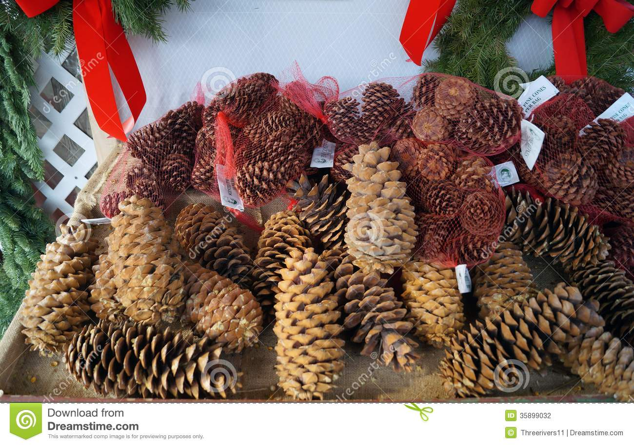 Pine Cones For Christmas Decorations Stock Photography