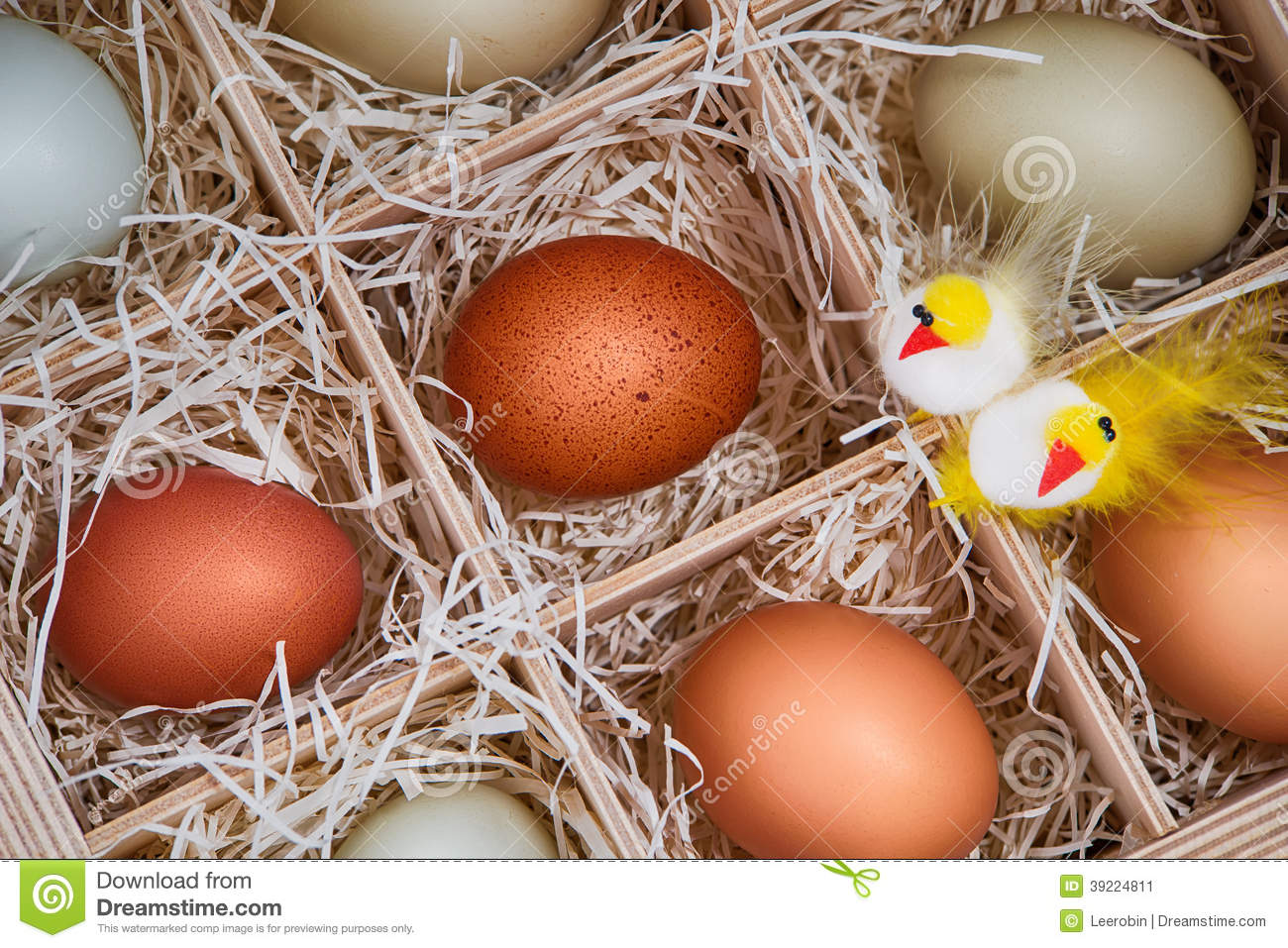 Decorative Chickens For Kitchen Decorative Easter Chickens With Eggs In Crate Stock Photo Image