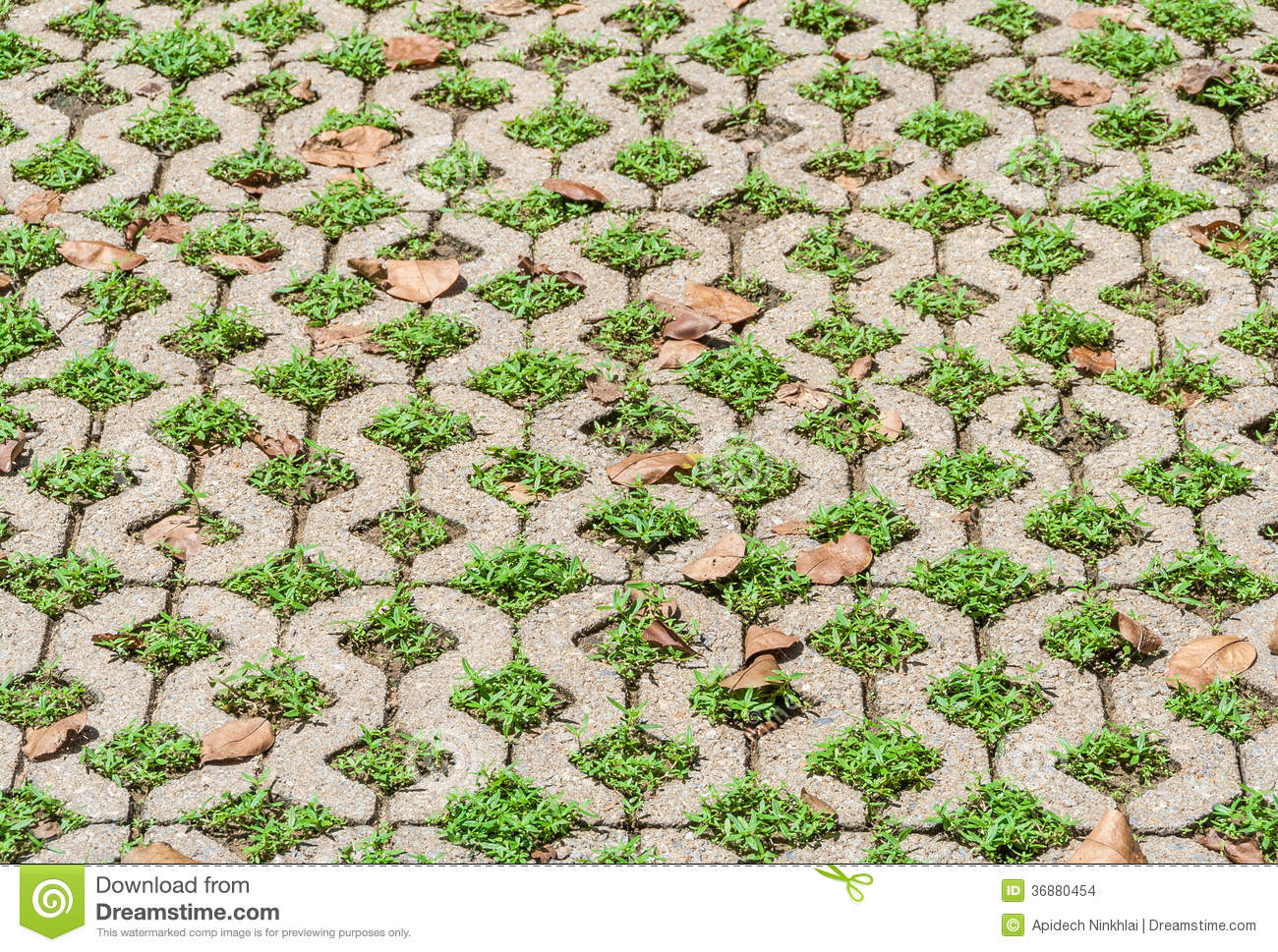Decorative Exterior Floor Stock Images Image 36880454