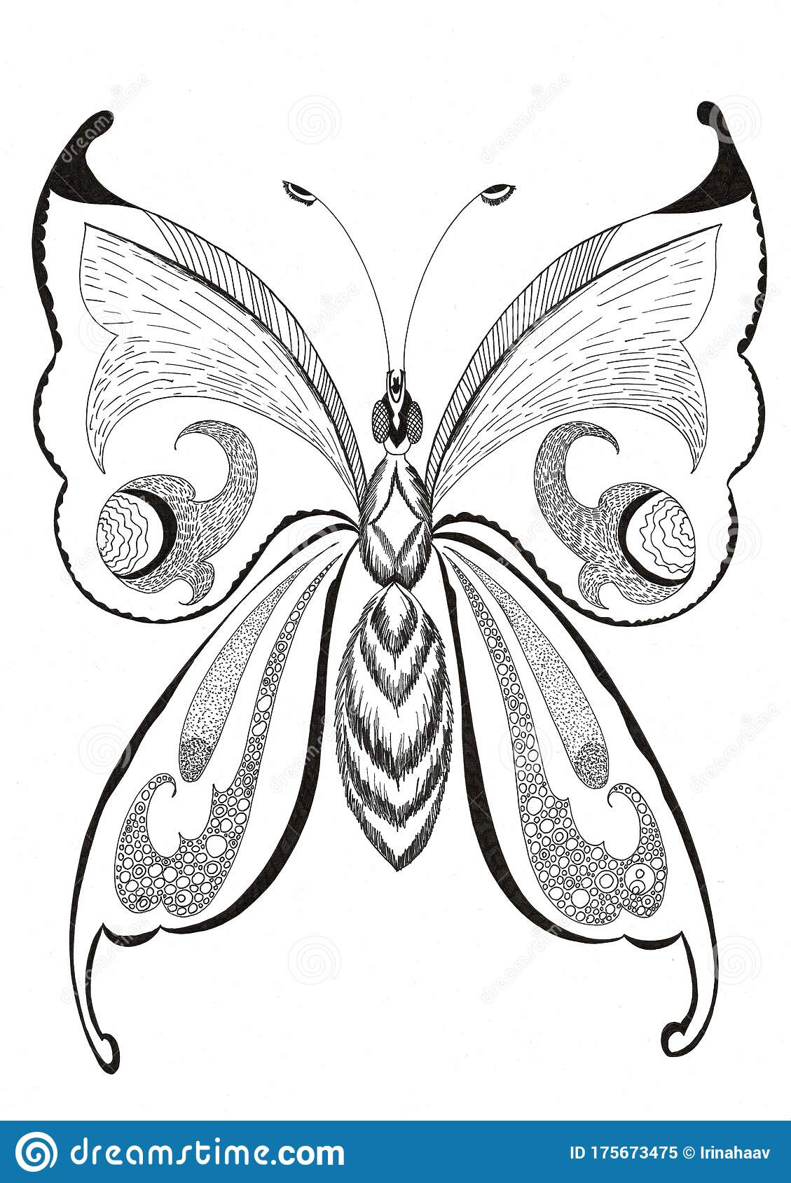 Decorative Fantasy Butterfly Drawn With Black Ink Stock Illustration Illustration Of Tattoo Clear 175673475