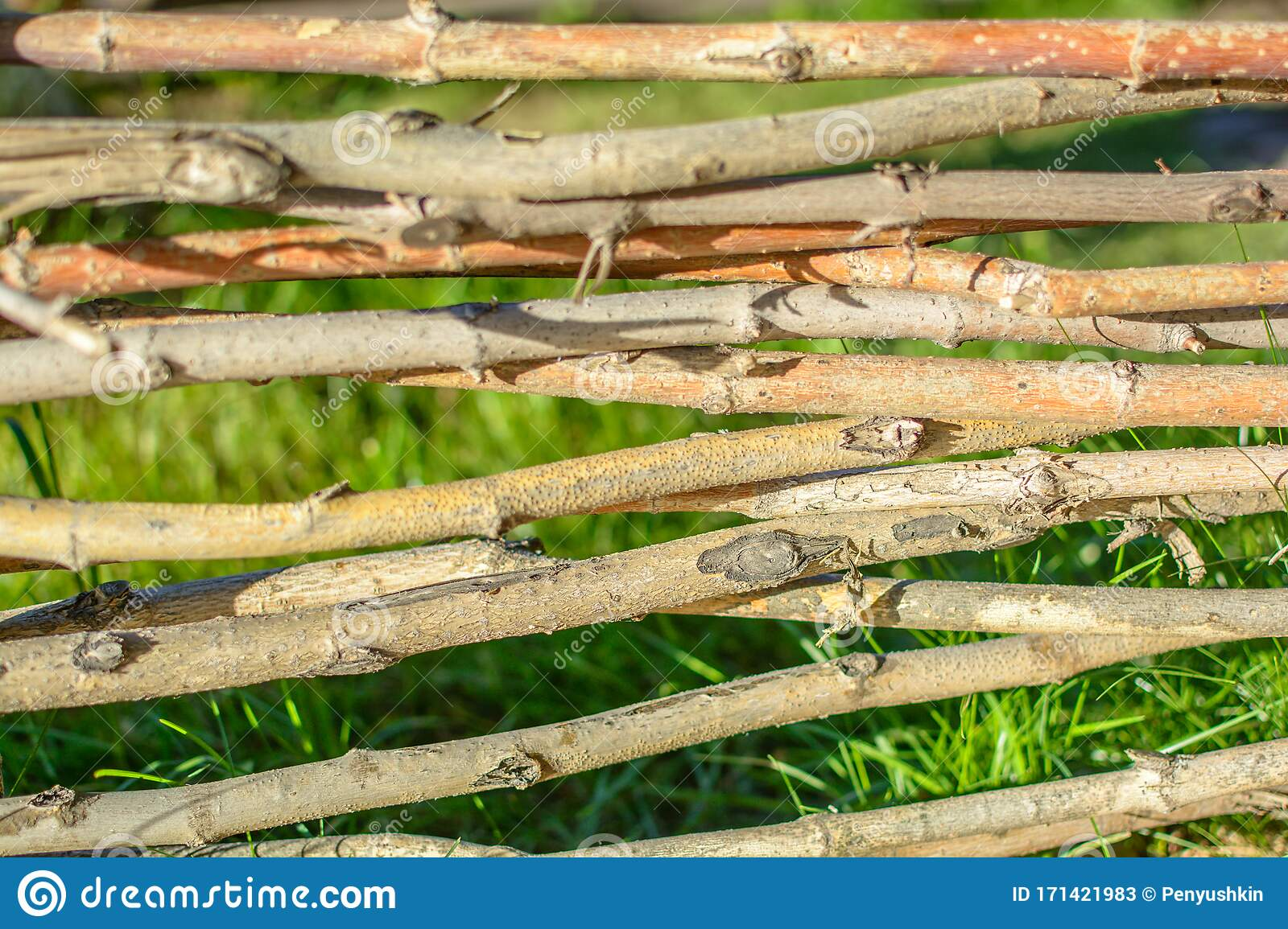 Picture of: Decorative Fencing From Thin Branches Stock Image Image Of Close Village 171421983