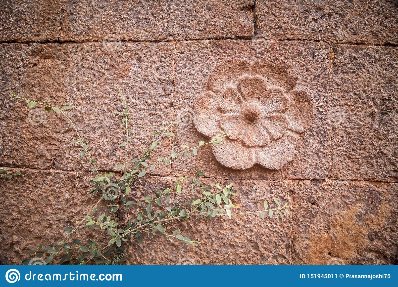 Decorative flower scalped on rock wall