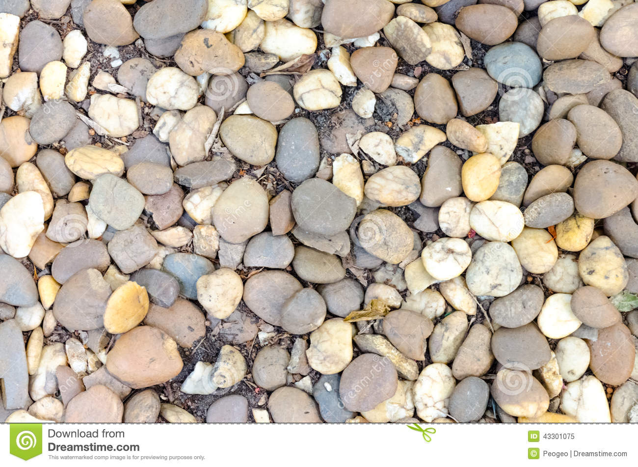 Decorative gravel pebble stones in garden stock photo - Pierre decorative exterieure jardin ...