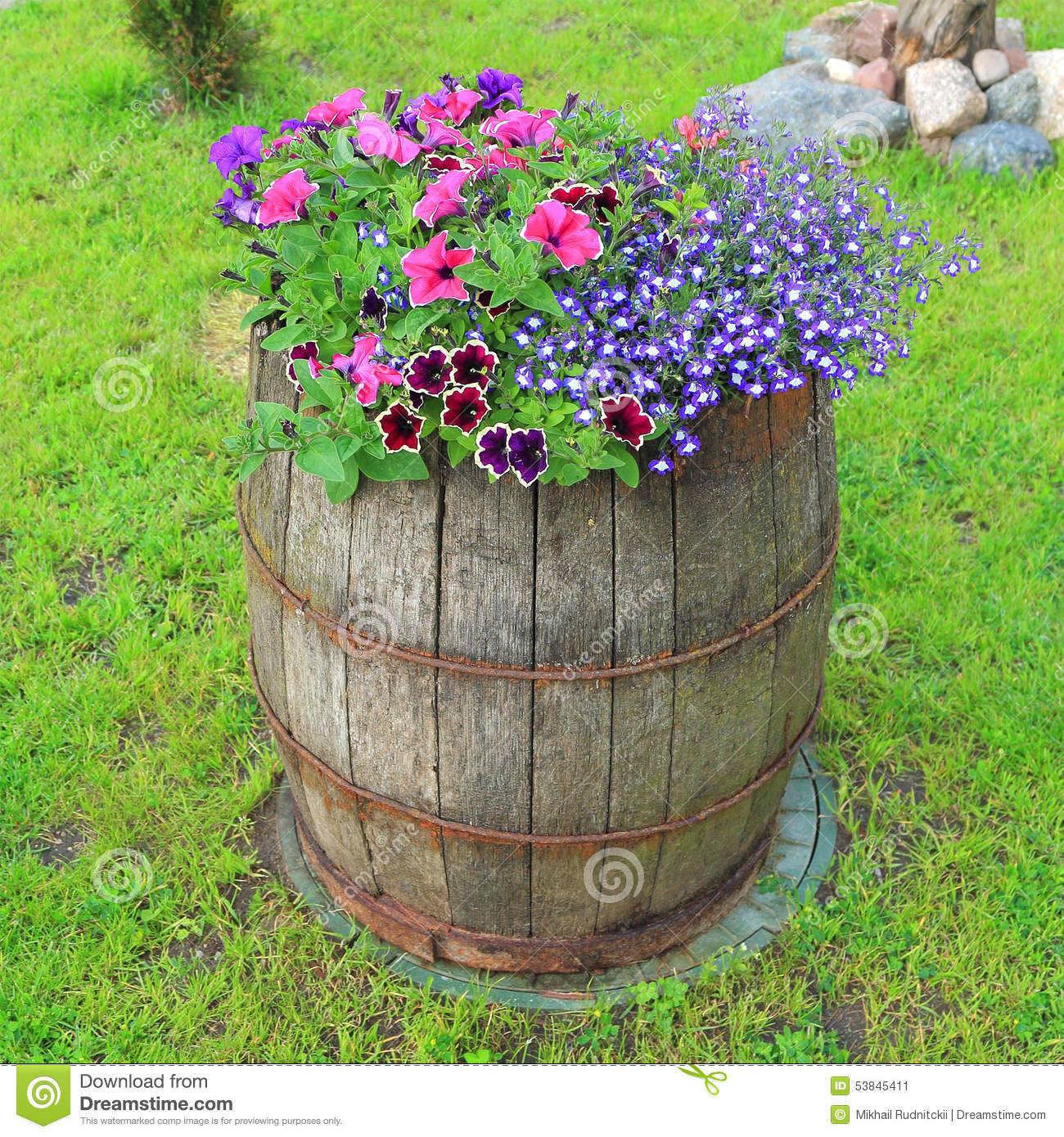 Decorative Old Wooden Barrel With Flowers Stock Image Image Of