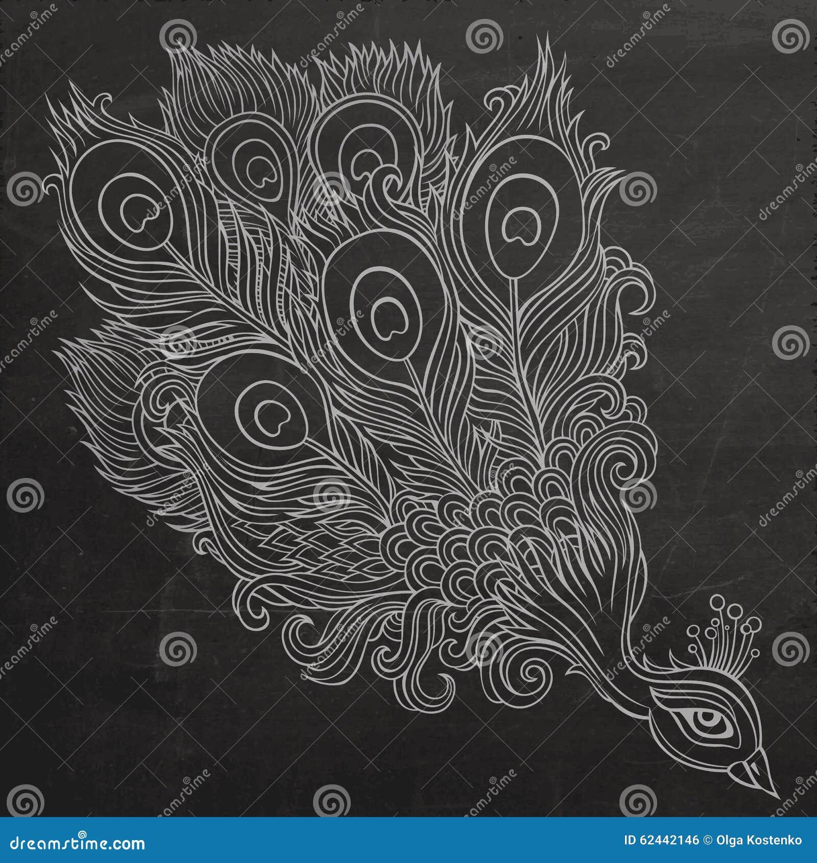 Decorative Ornamental Peacock Chalkboard Stock Vector