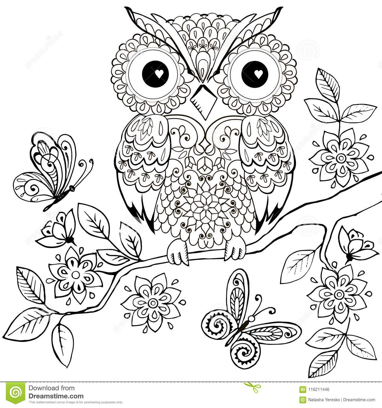 Decorative Owl On A Flowering Branch Coloring Book For ...