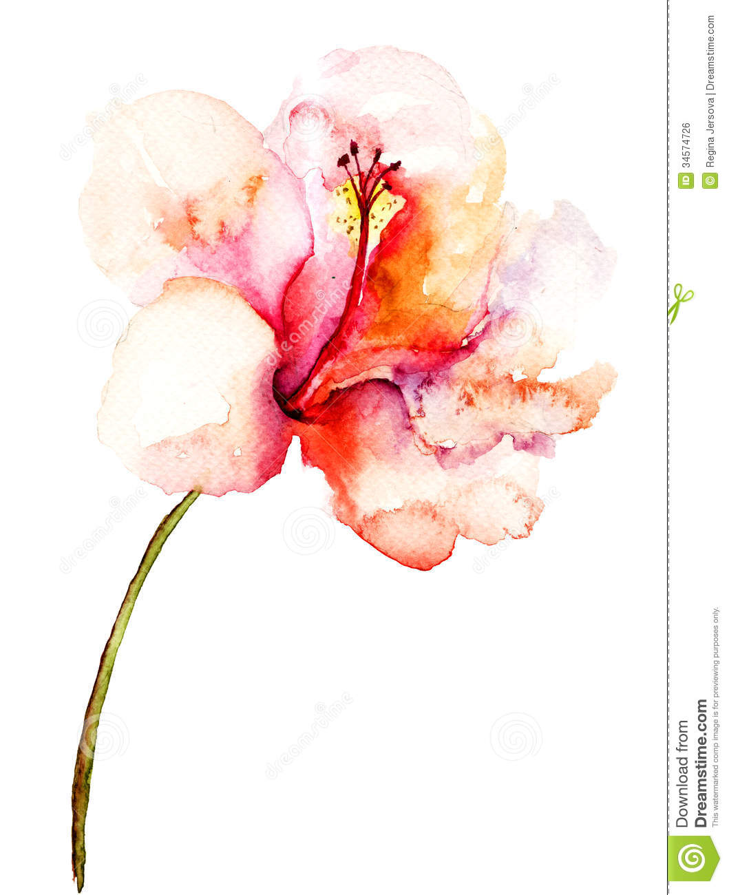 Decorative pink flower stock illustration illustration of decorative pink flower mightylinksfo
