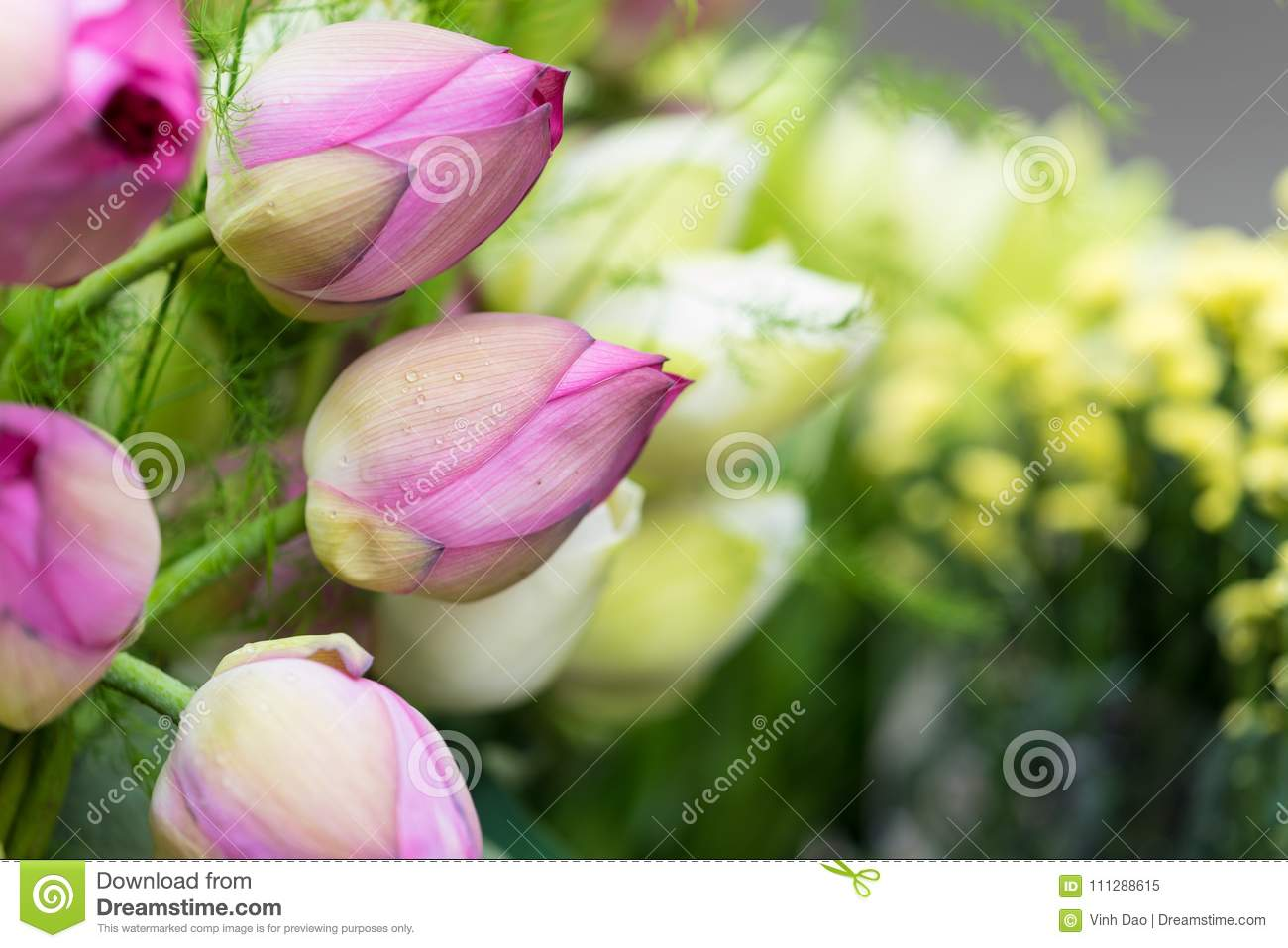 Decorative Pink And Green Lotus Flower Bouquet Stock Image Image