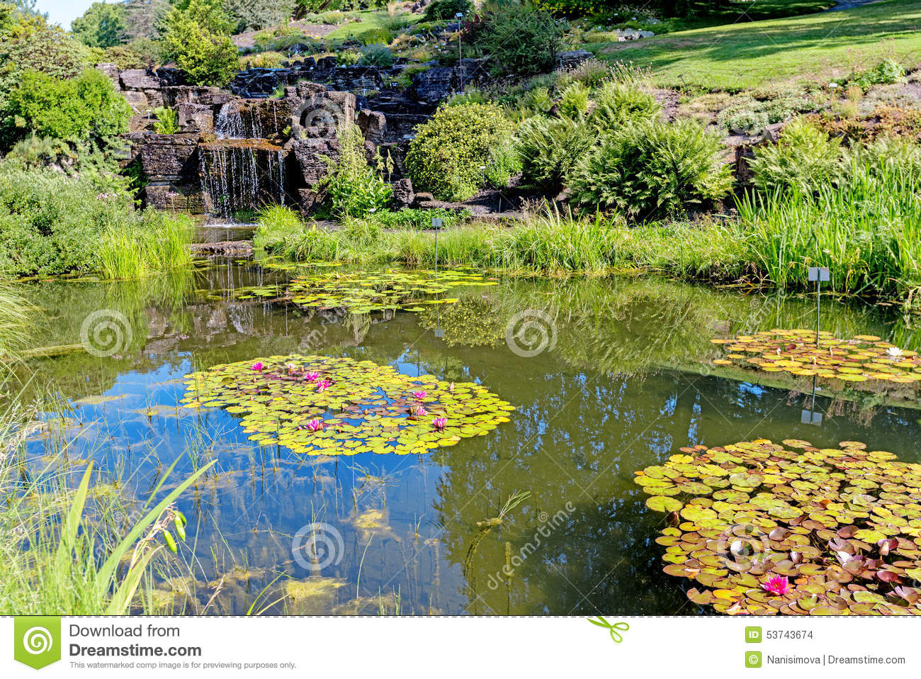 Waterfall in a city park stock image for Ornamental pond waterfall