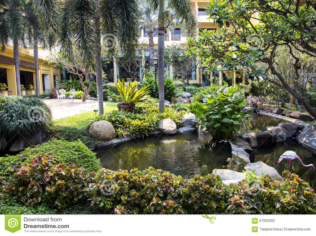 decorative pool in a beautiful tropical garden stock photo - image