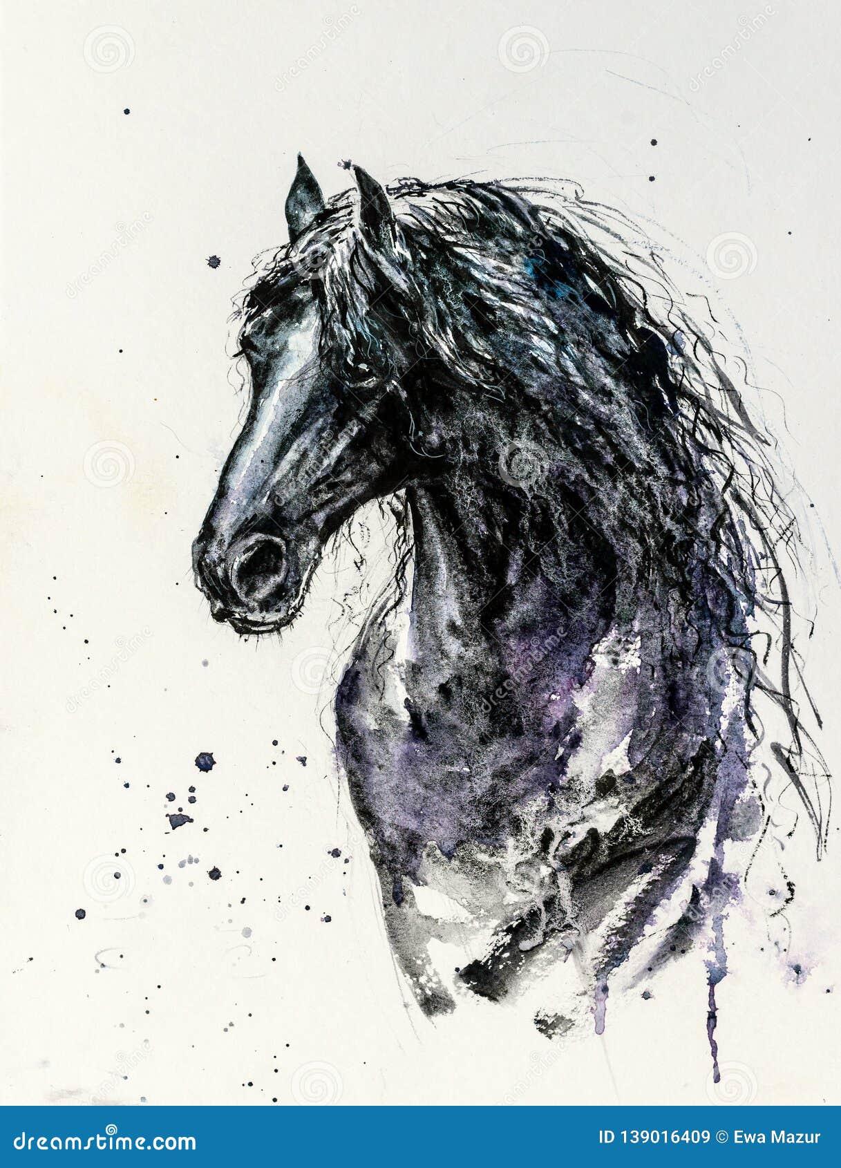 Friesian Horse Stock Illustrations 101 Friesian Horse Stock Illustrations Vectors Clipart Dreamstime
