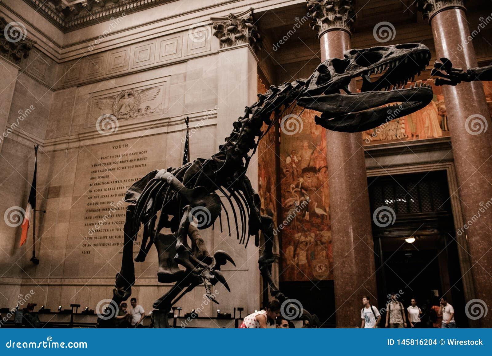 A decorative skeleton of a dinosaur