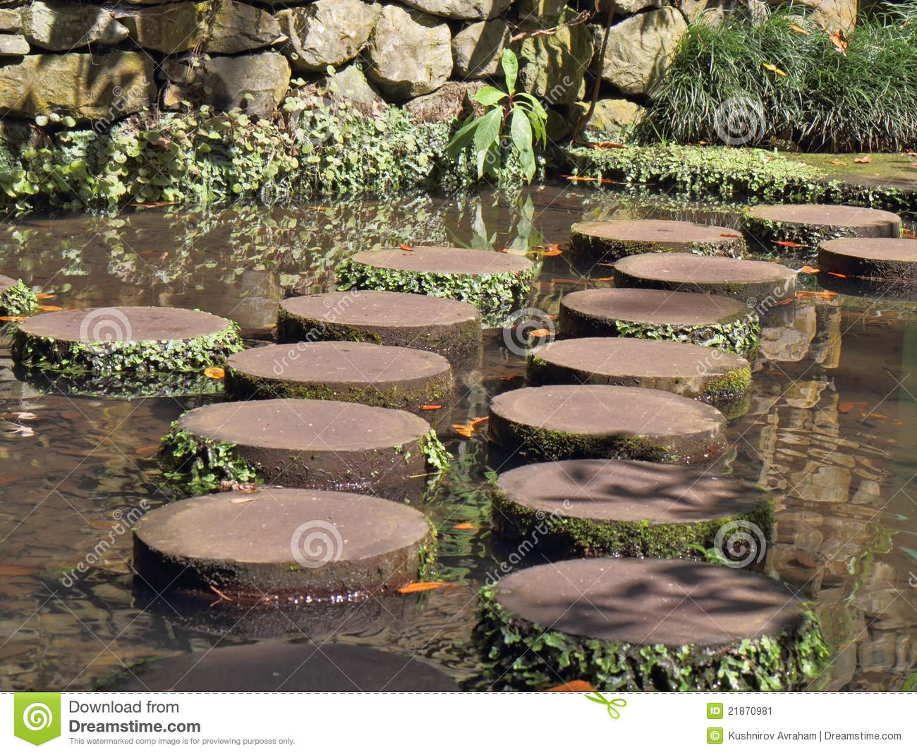 Decorative Track Across The Pond Stock Image Image 21870981