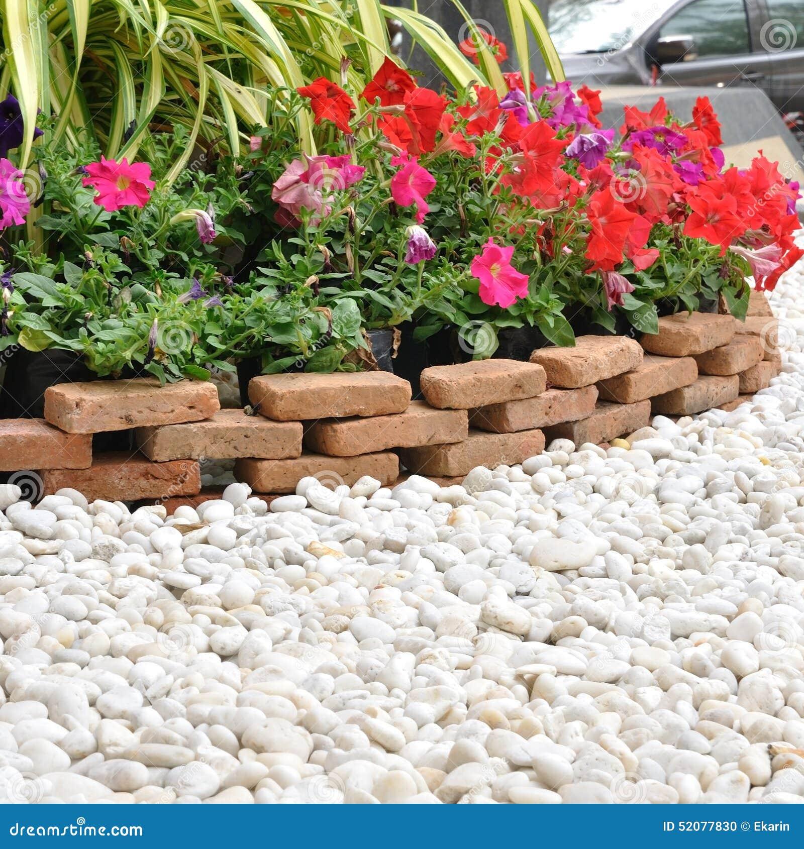 Decorazione del giardino con roccia ed i fiori bianchi - Ideas para jardines pequenos fotos ...