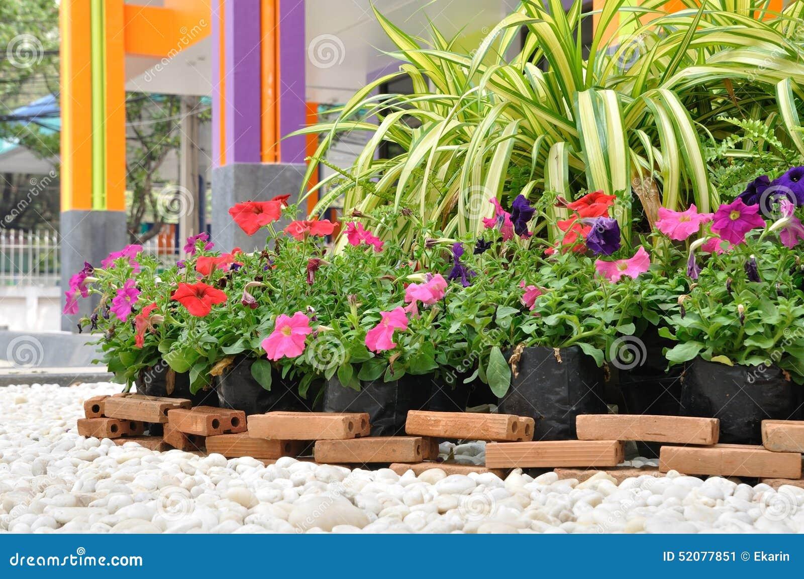 Decorazione del giardino con roccia ed i fiori bianchi for Giardino con fiori