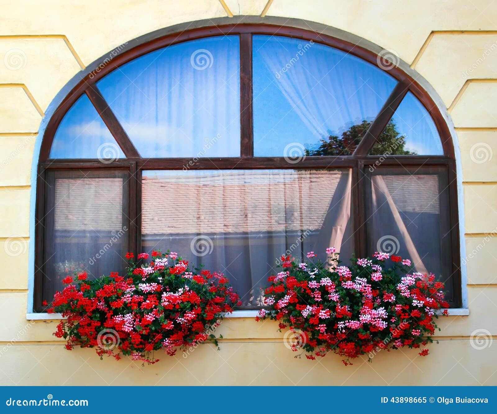 Decorazione della finestra con i fiori immagine stock for Finestra con fiori disegno
