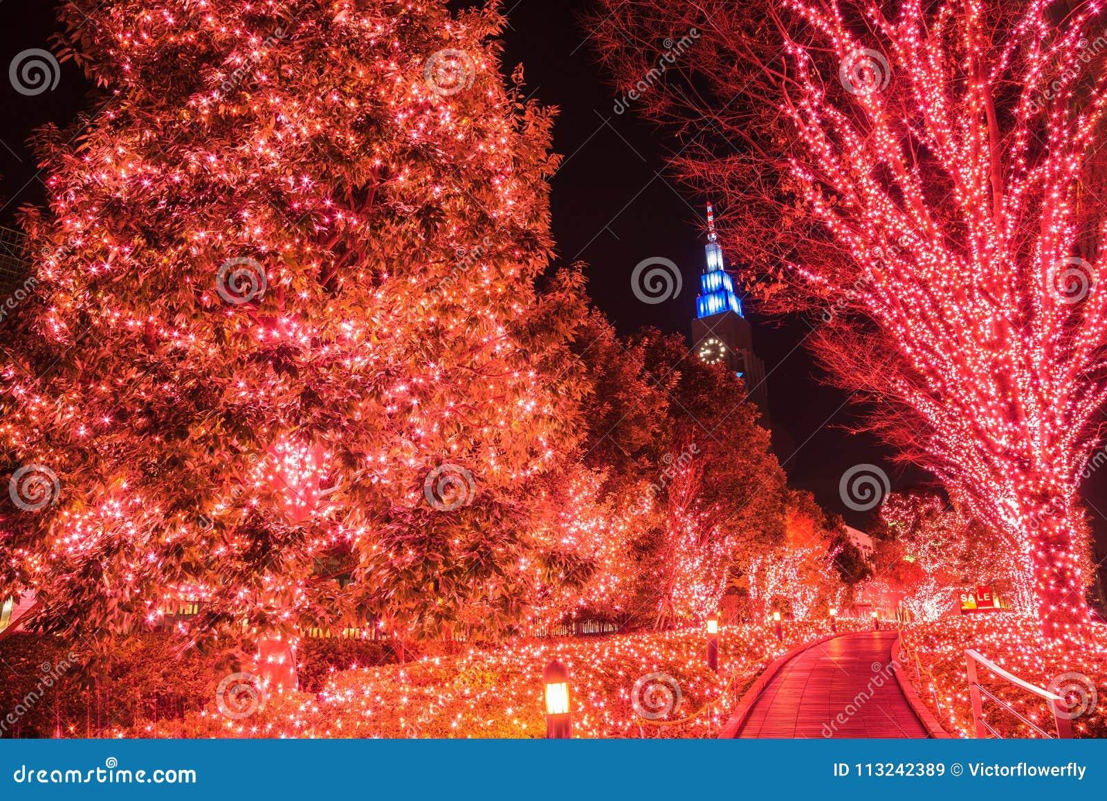 Decorazione della luce notturna illuminazione di inverno a tokyo