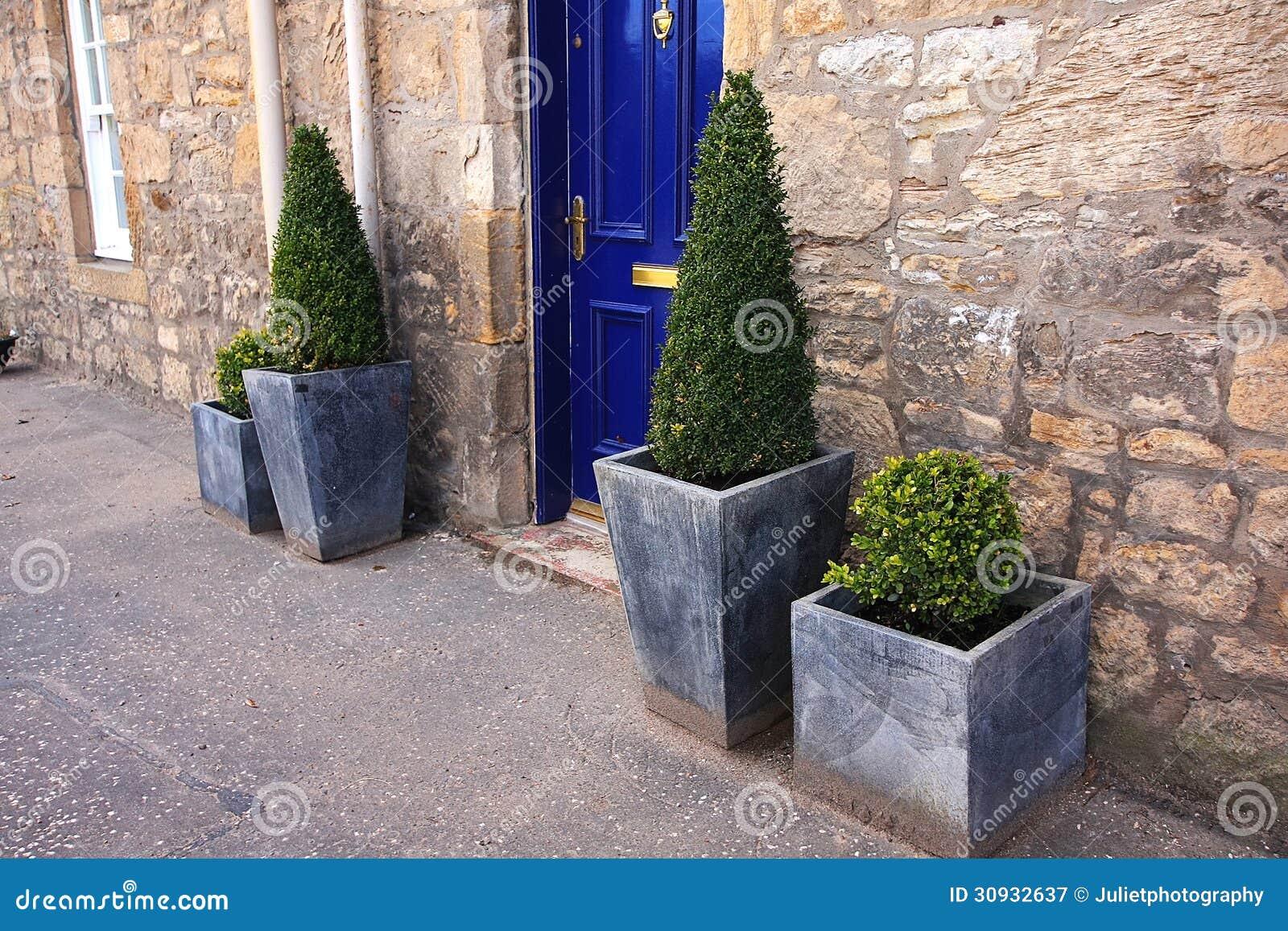 Decorazione della pianta davanti ad una casa immagine for Una pianta della casa di legno