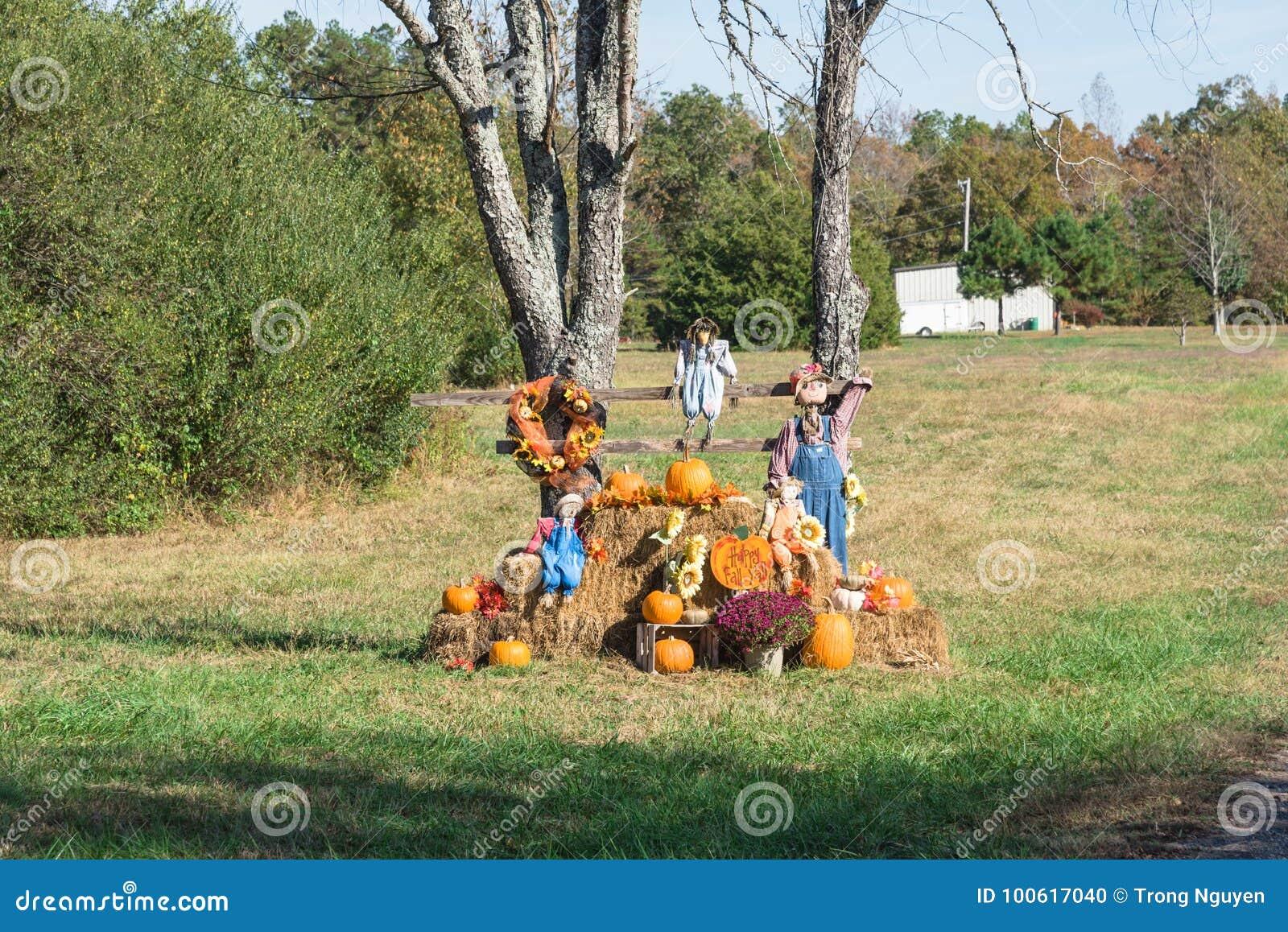 Decorazione Di Halloween Dello Spaventapasseri In Campagna