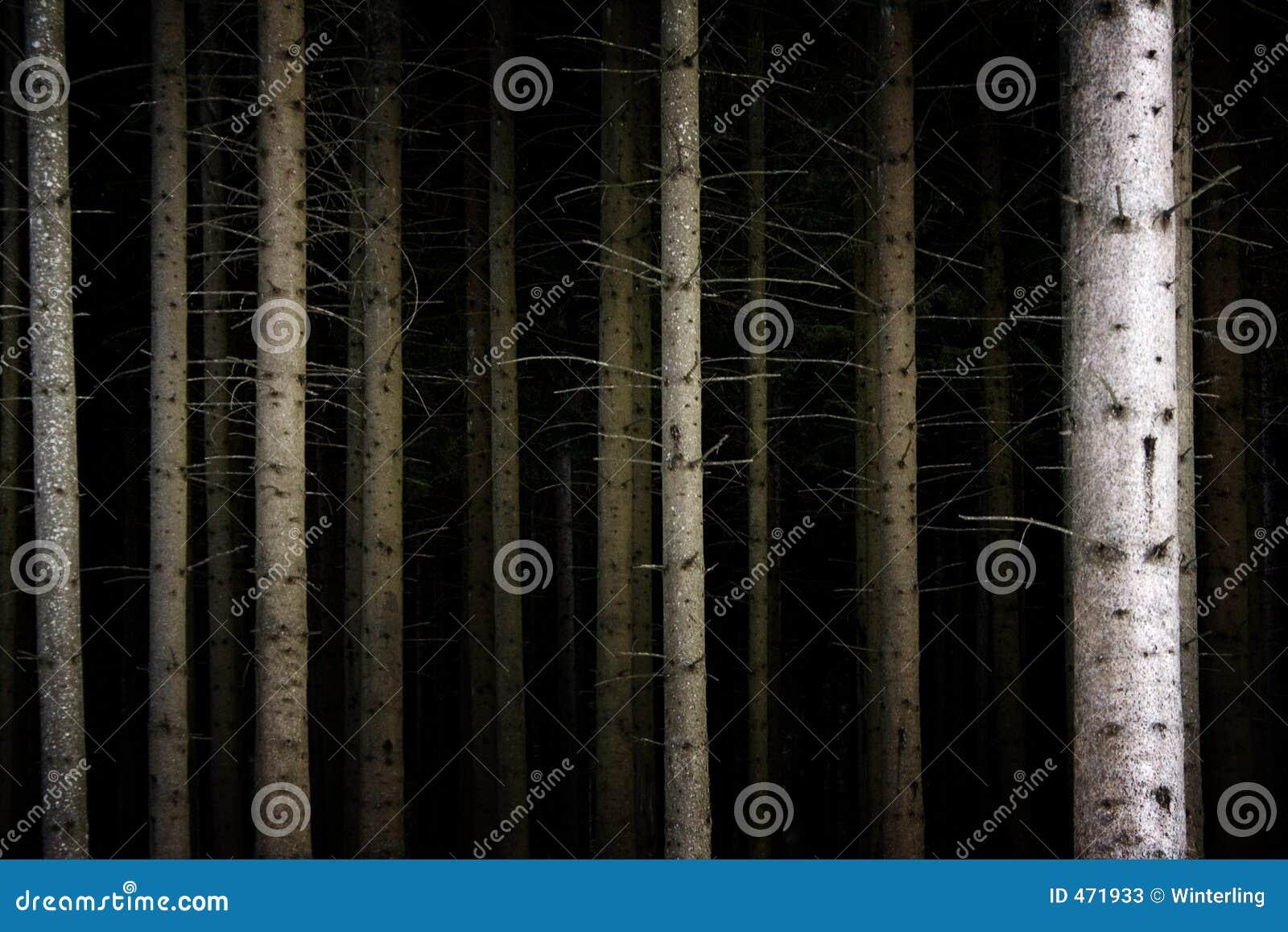Deep Dark Forest