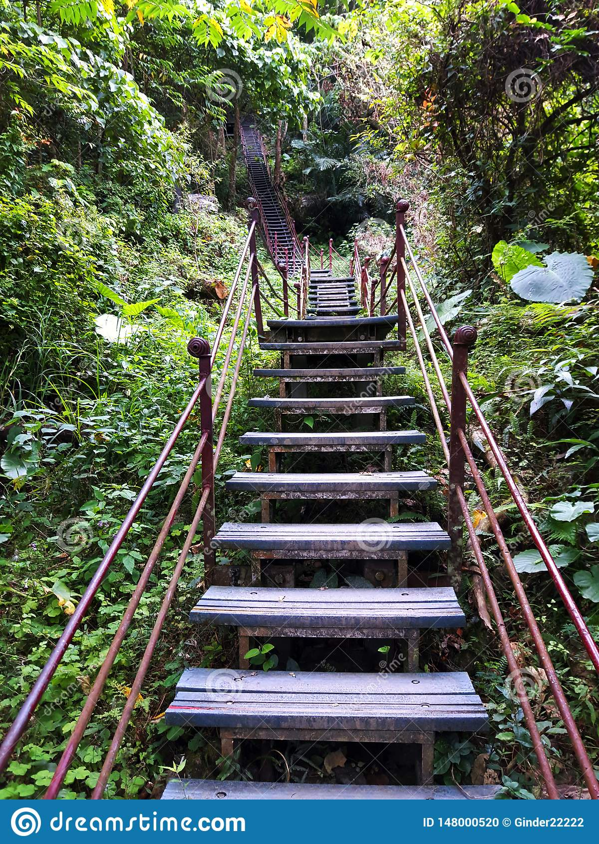 Deep in Taroko - the trail with very high stairs