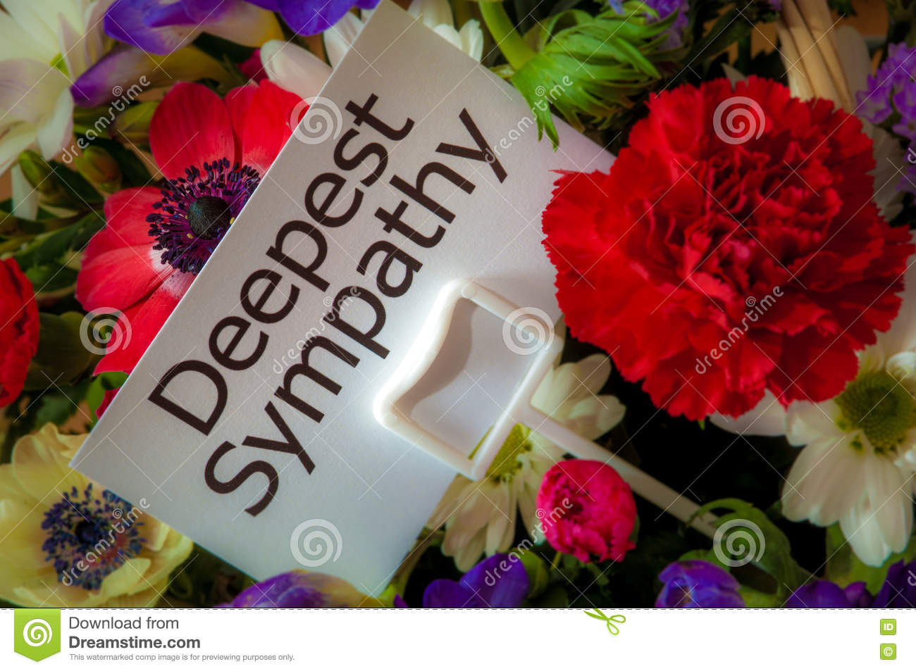 Deepest Sympathy Card In Flowers Stock Photo Image Of Death