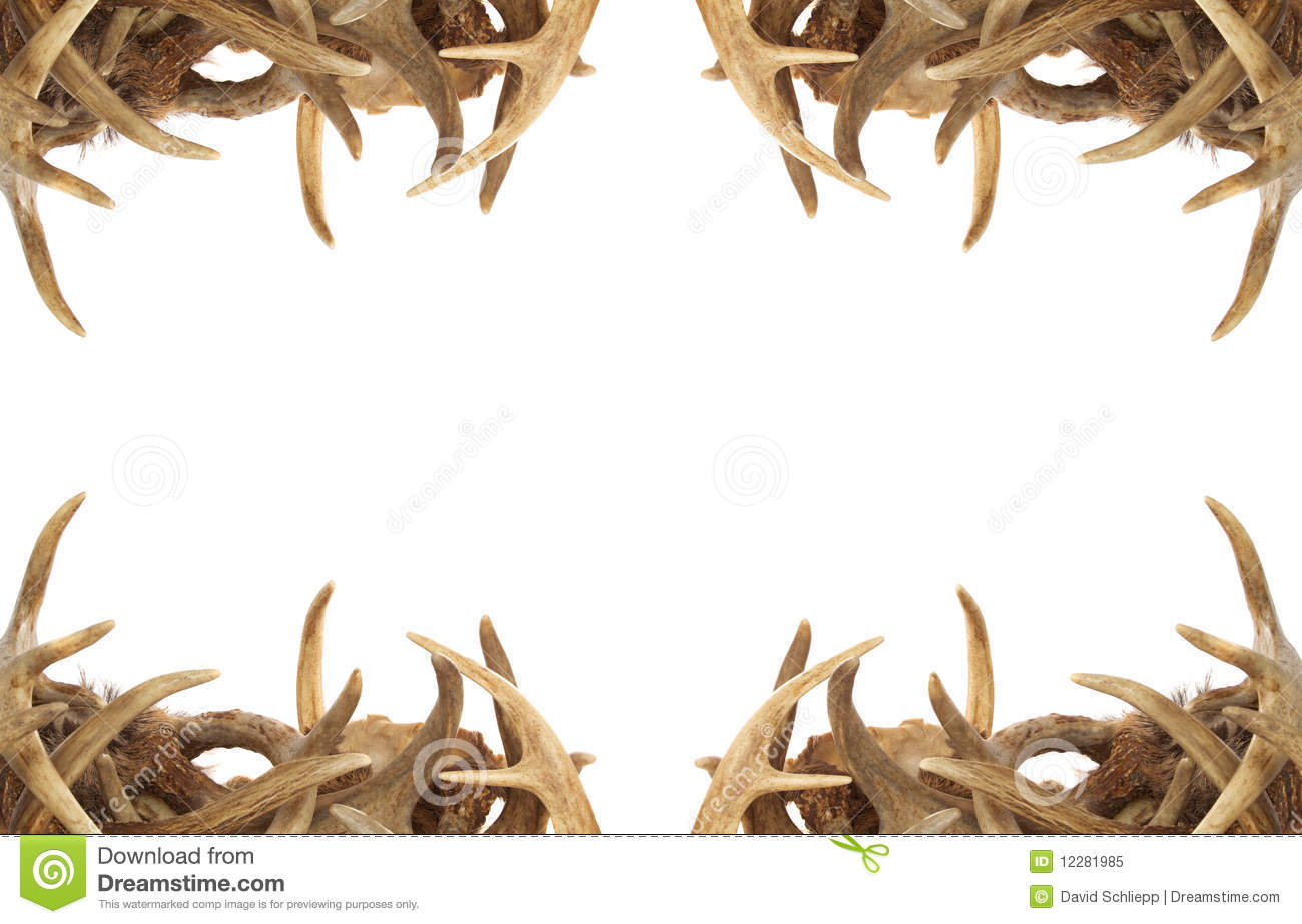 Deer Antler Border Royalty Free Stock Photo - Image: 12281985