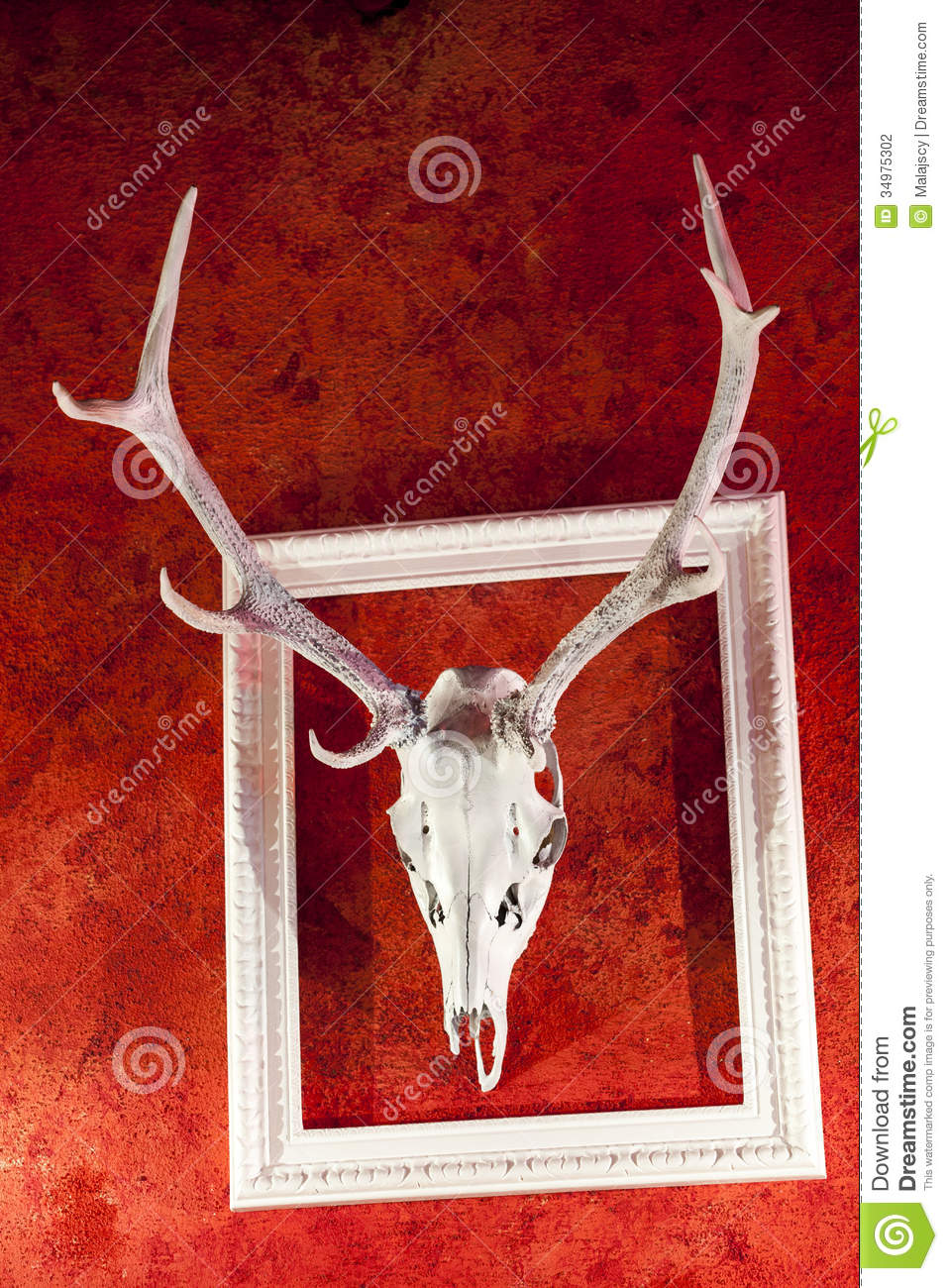 Deer Antlers in the Frame stock photo. Image of copy - 34975302