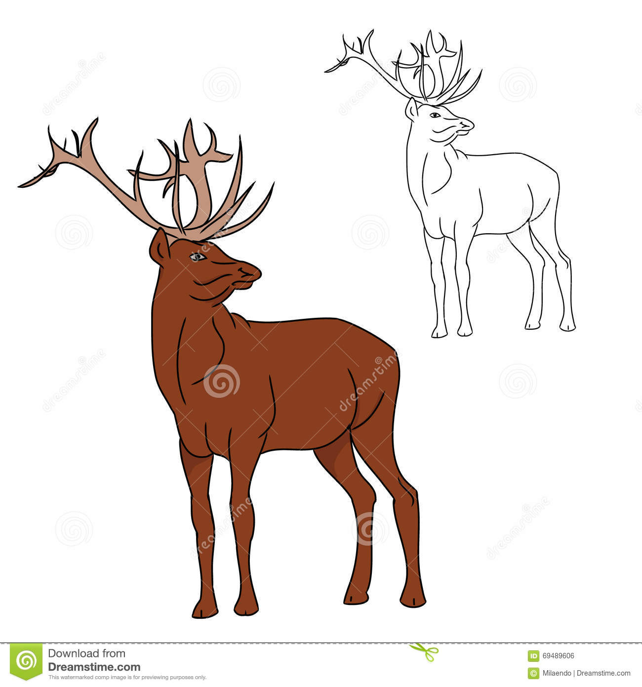 Deer Contour Line Drawing : Deer color and contour image stock vector