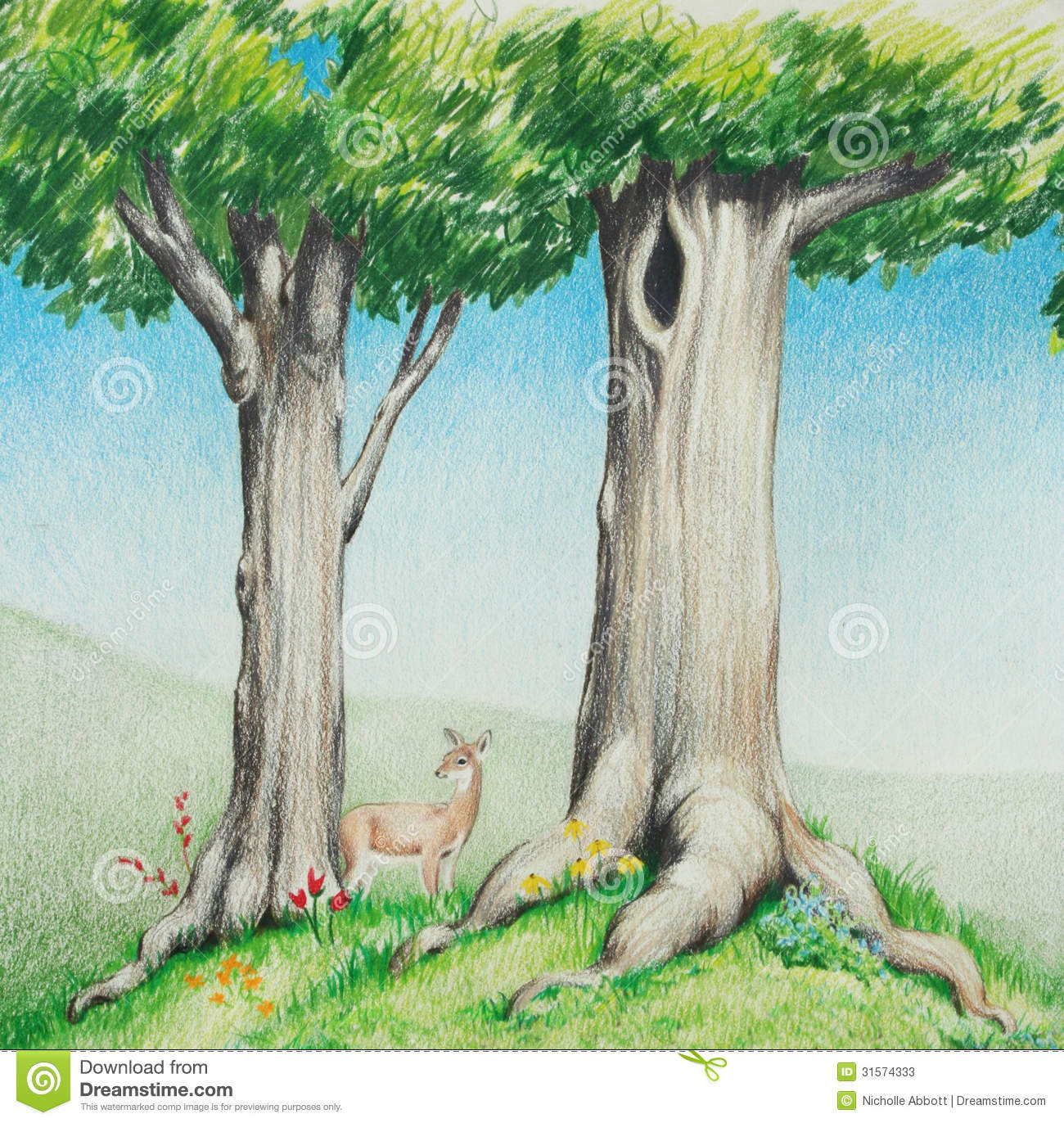 Hand drawn colored pencil sketch of cute deer in big tall trees with ...