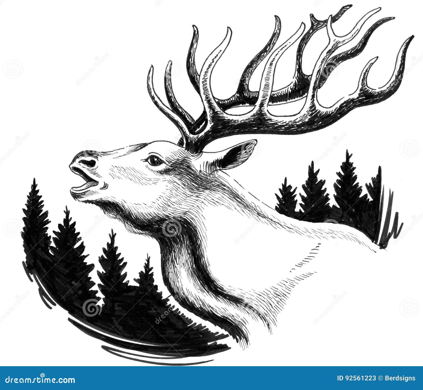 Deer In The Forest Stock Illustration. Illustration Of