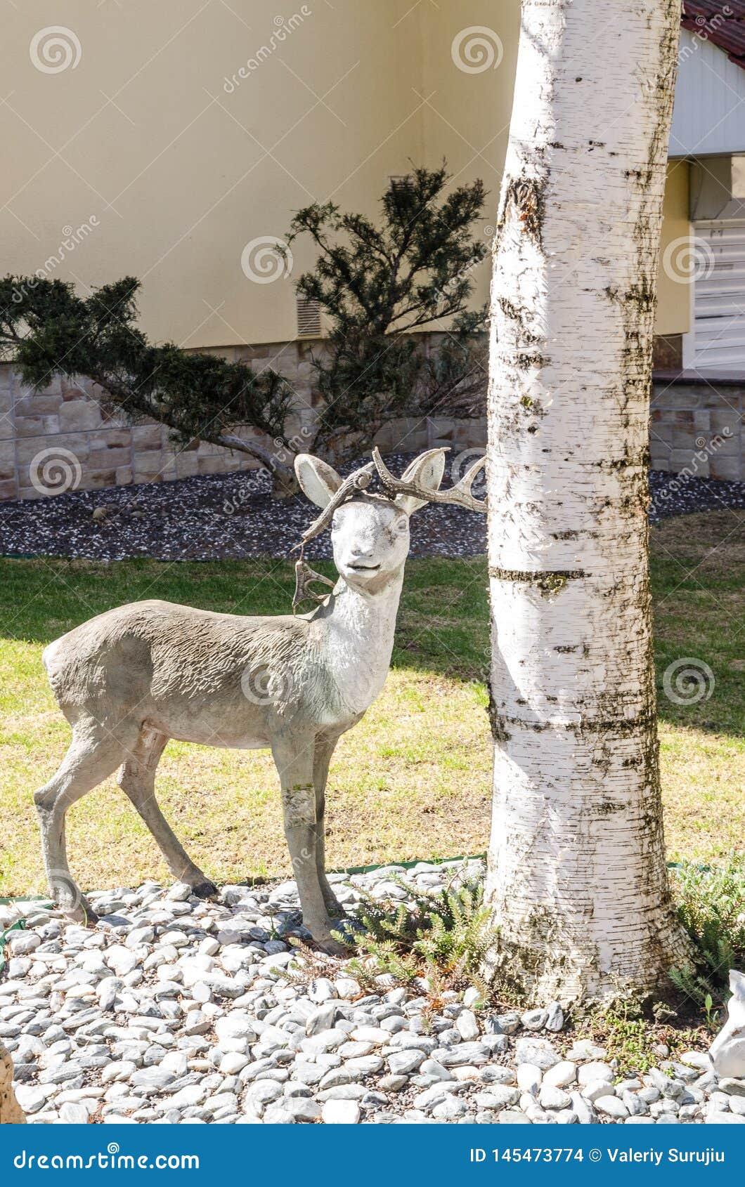 Deer garden decor stock photo. Image of interior, head - 9