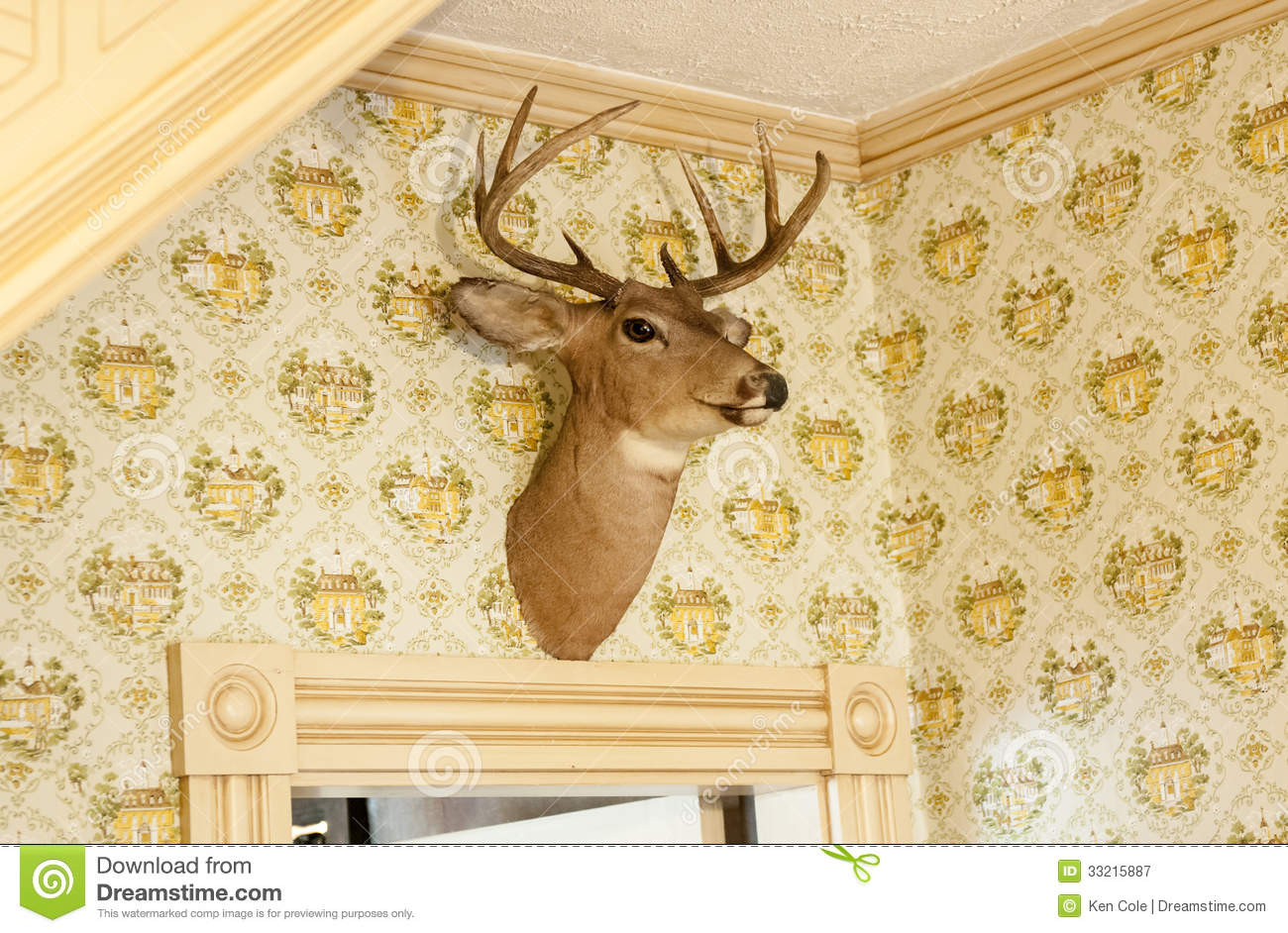 Famous Stag Head Wall Decor Gift - All About Wallart - adelgazare.info