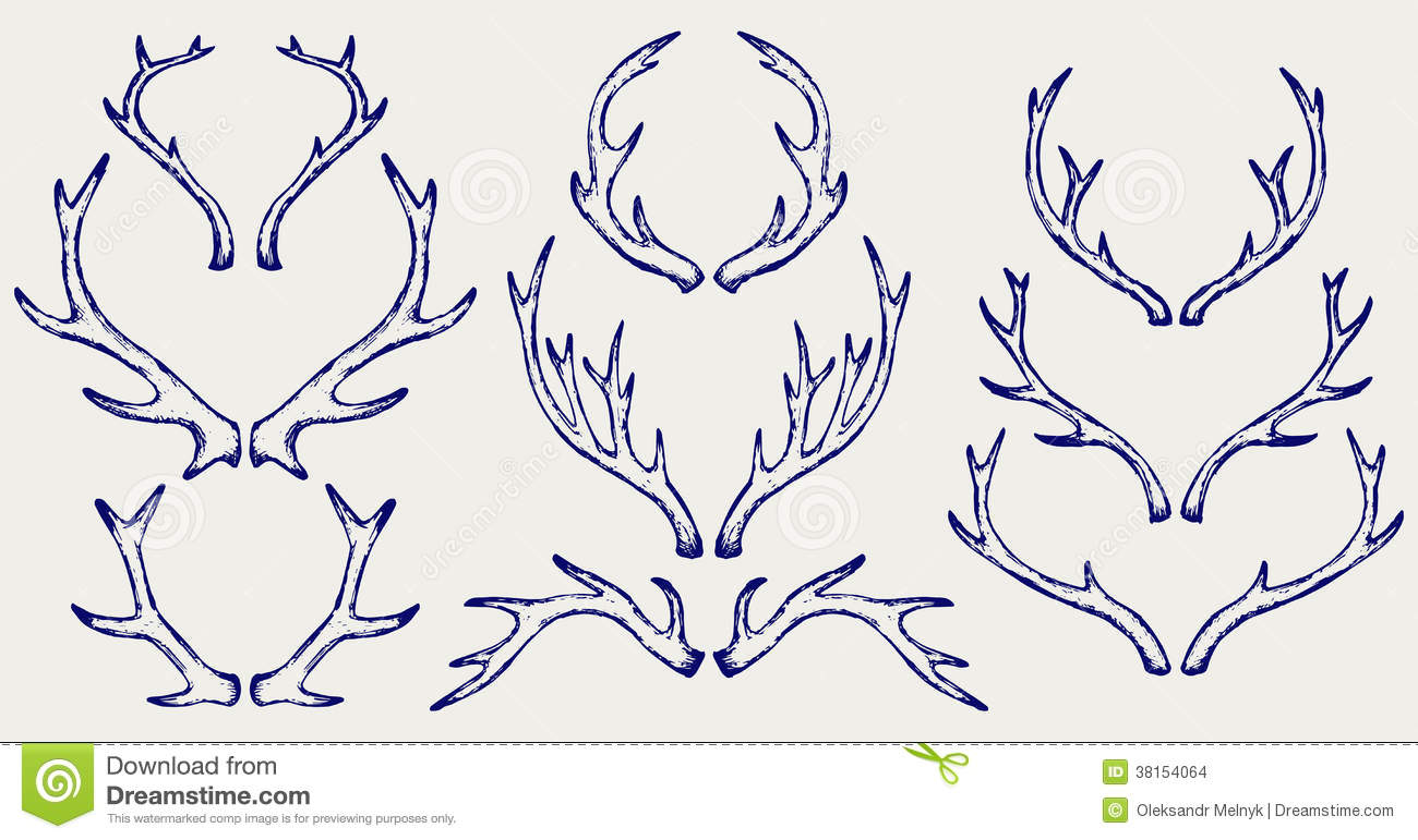 antlers online dating Antlers are rugose (rough or ridged surface), short  roe deer are browsers that actively select different food types including herbs, brambles, ivy,.