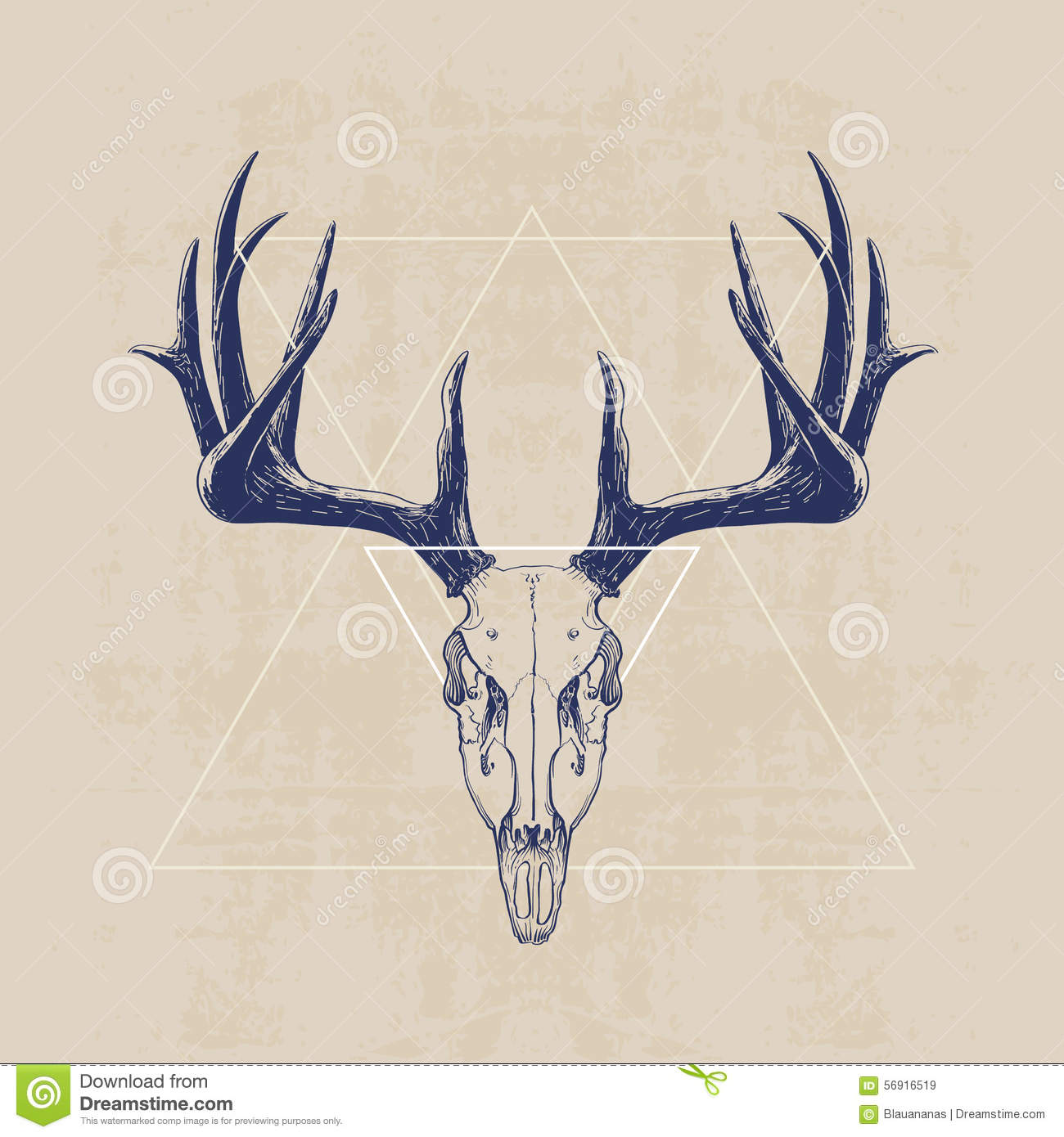Deer skull stock vector. Illustration of design, vector - 56916519