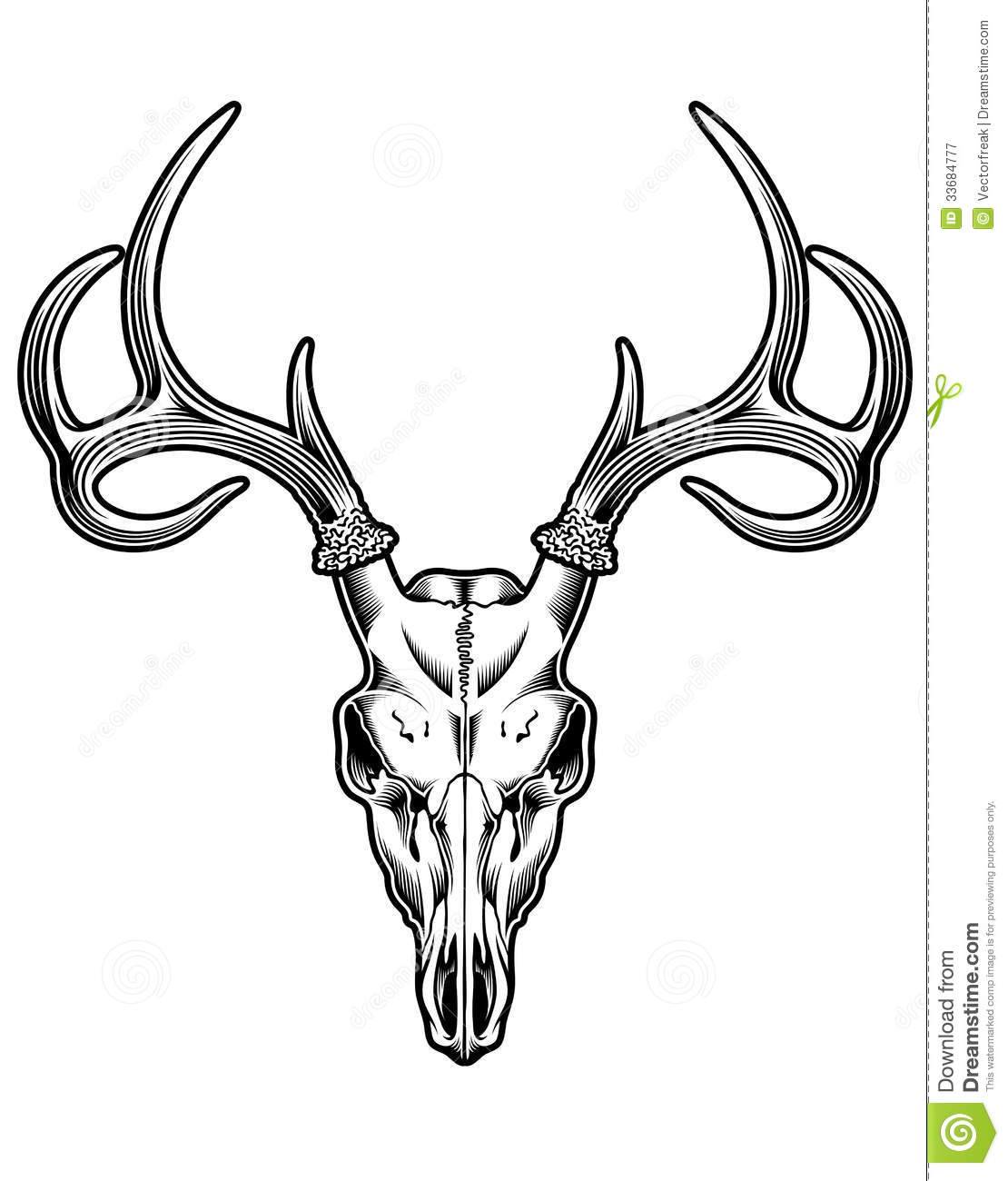 Deer Skull Logo Design Deer skull vector