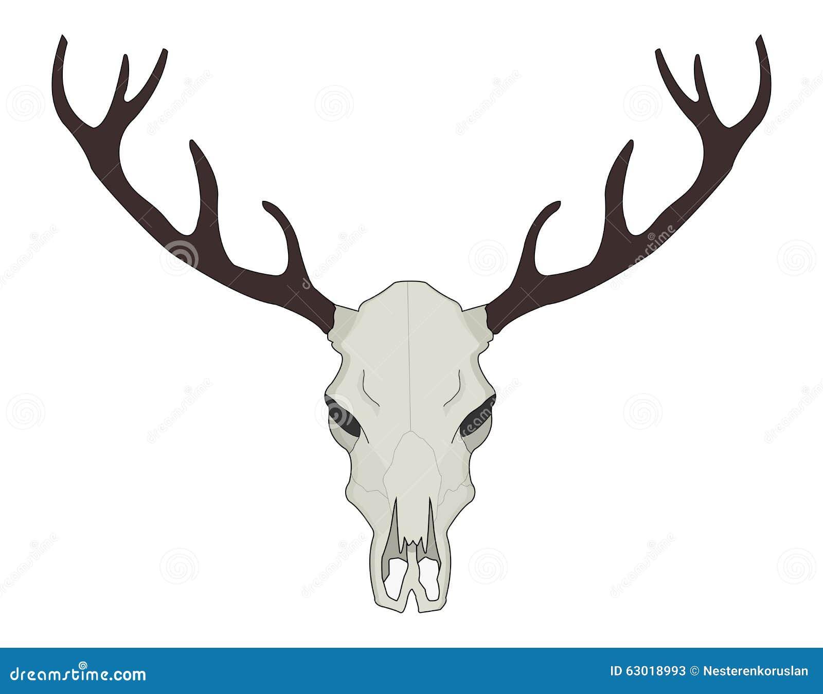 deer skull vector illustration color stock vector image ranch dressing clipart ranch clipart free