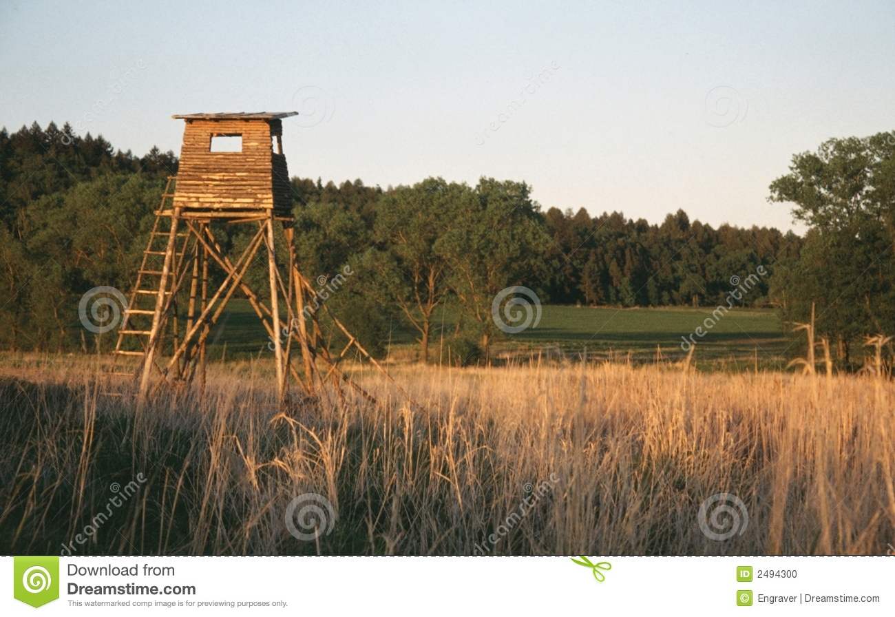 Deer stand stock photo image of still stand nature for Deer stand images