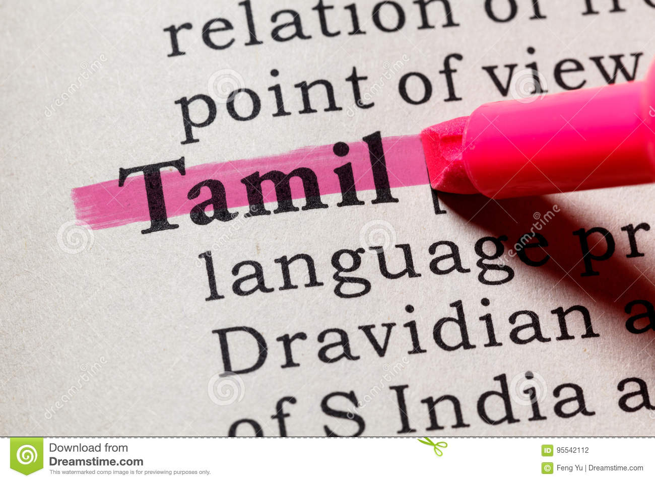 Definition of Tamil stock photo  Image of close, language - 95542112