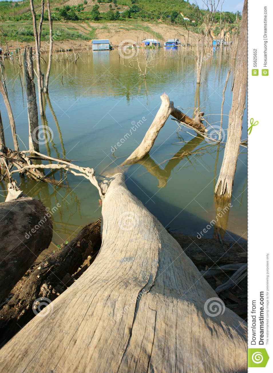 living environment Living environment course units to gain access to course handouts click on  unit link unit one through twelve handouts have been uploaded related links.