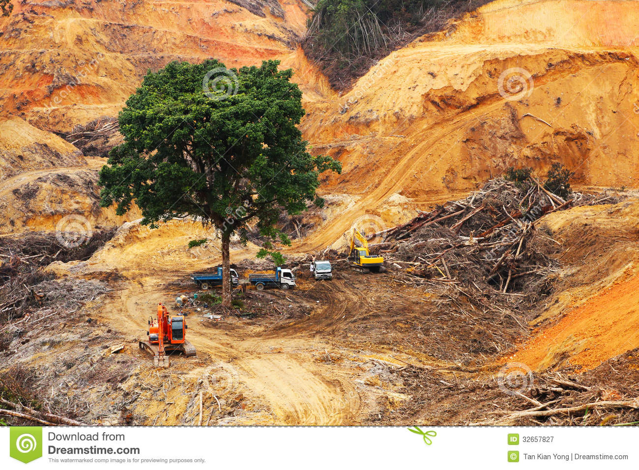 deforestation the destruction of forest and nature Find forest destruction stock images in hd and millions of  deforestation logging of forest  a nature lover environmentalist with arms wrapped around a pine.