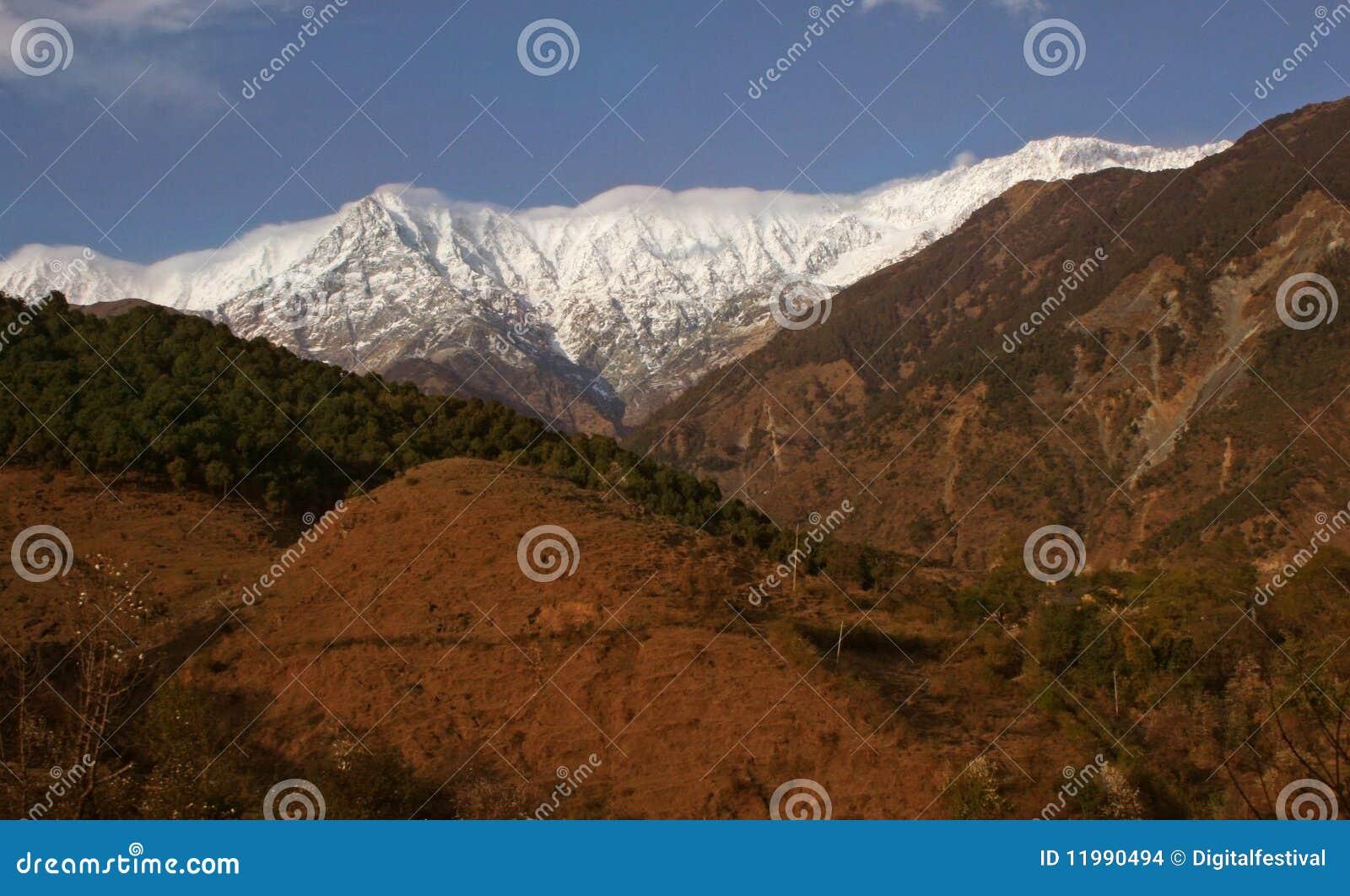 Deforestationhimalayas india maximal snow
