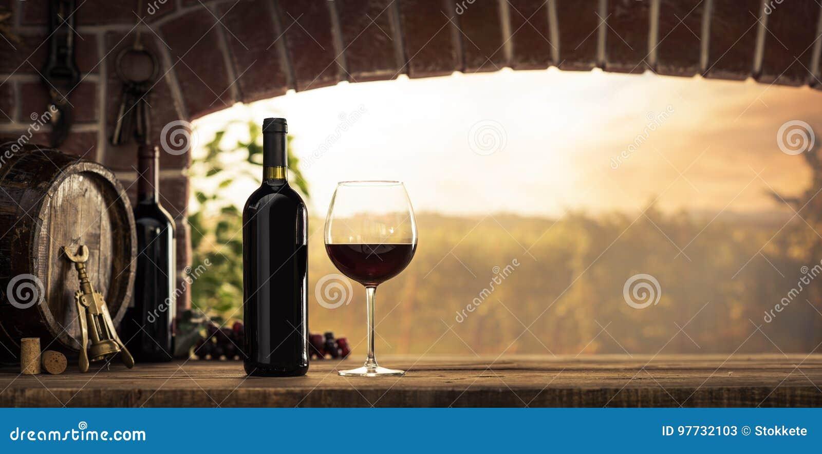 Degustación de vinos roja en el sótano