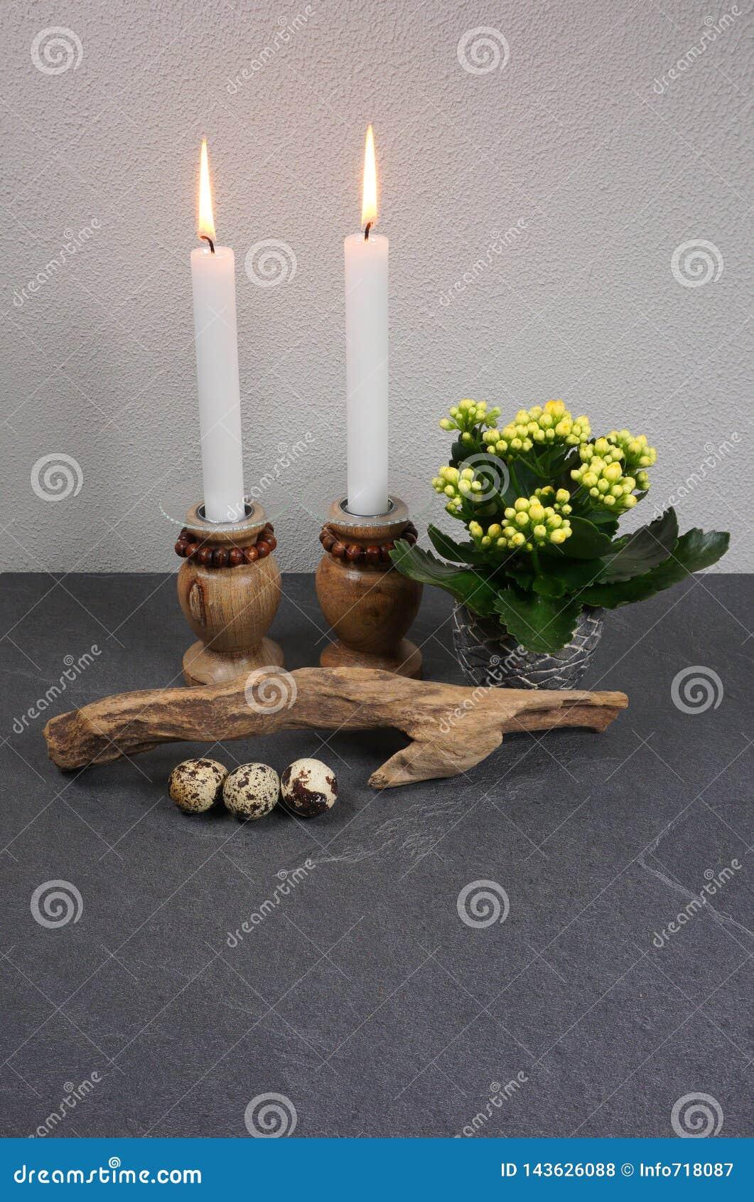 Dekoracja dla domowego ambiance z świeczki kalanchoe driftwood przy szarym drewnianym tłem i blossfeldiana