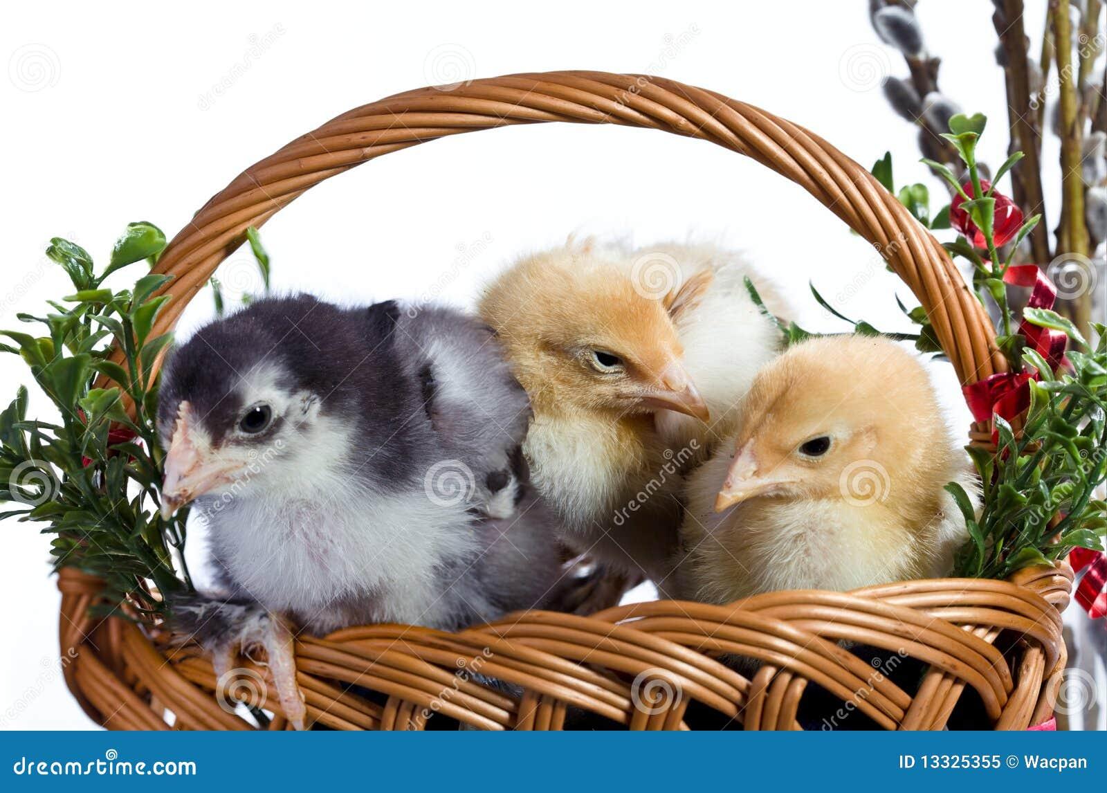 Dekoracja Easter