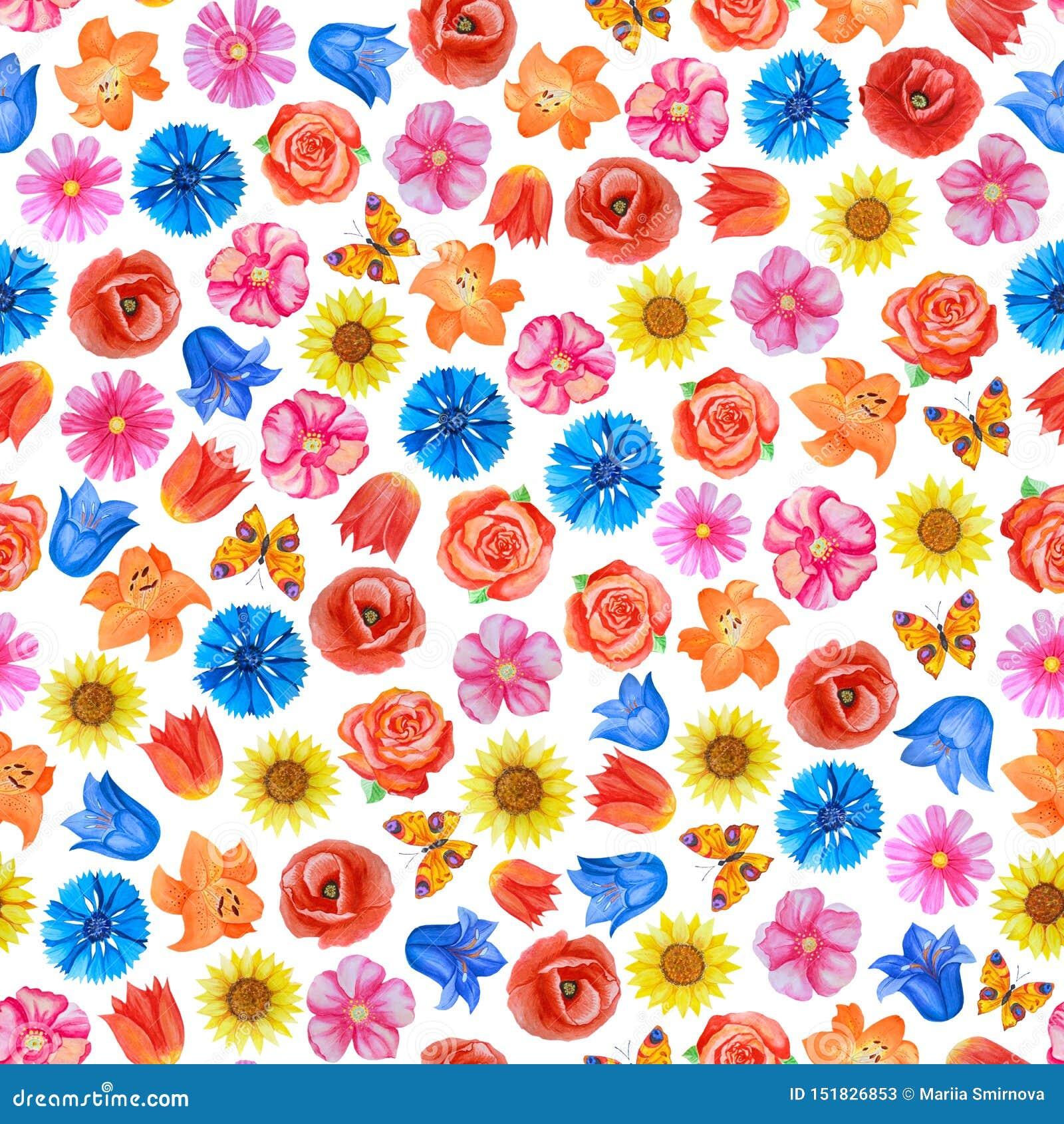 Dekoracyjny kwiecisty t?o R??ni jaskrawi kwiaty