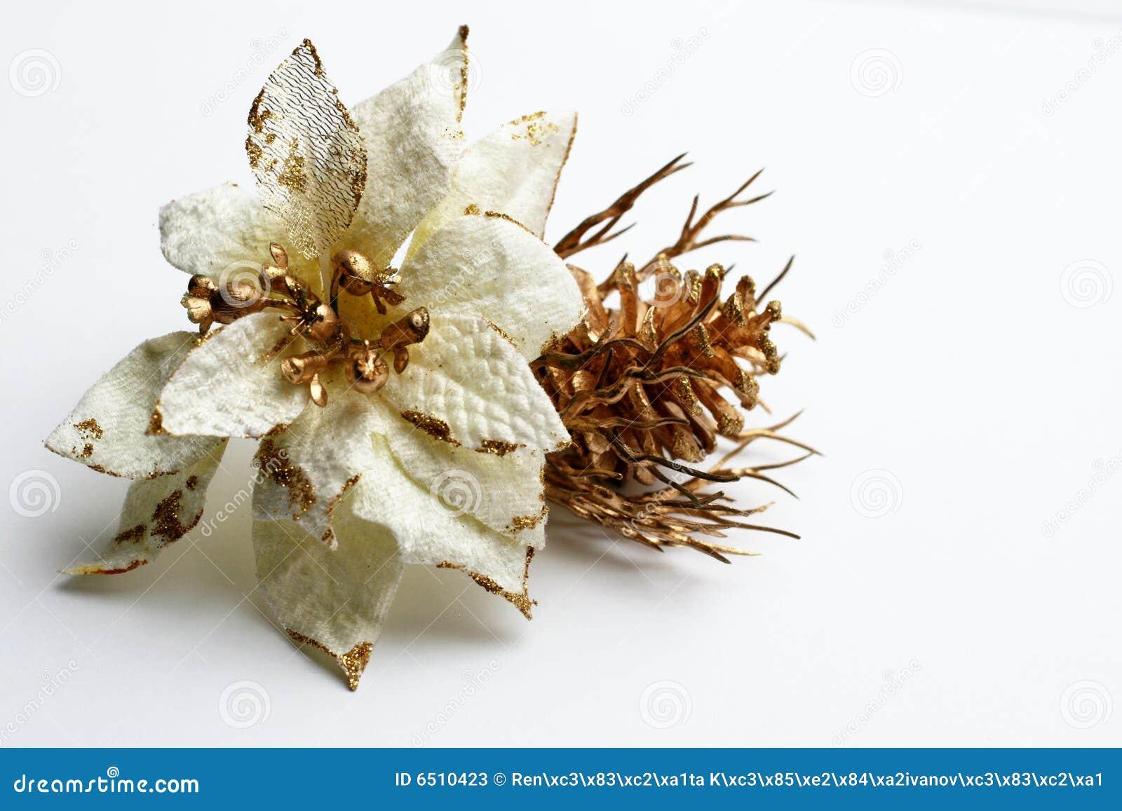 Dekoration der weißen Blume