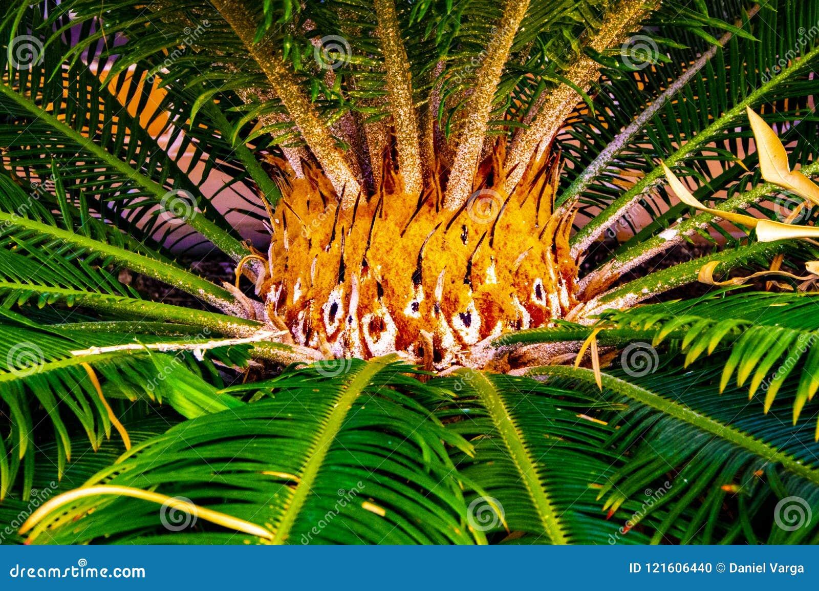 Dekorativ detaljerad mitt av en grön palmträd som flammor