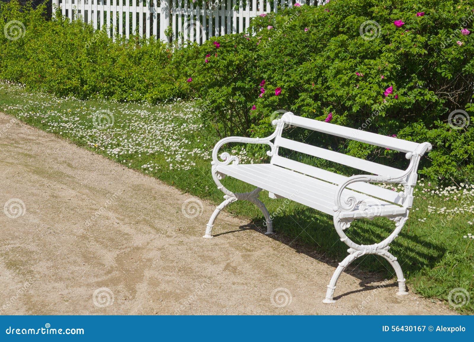 Dekorativ vit bänk i trädgård arkivfoto   bild: 56430167